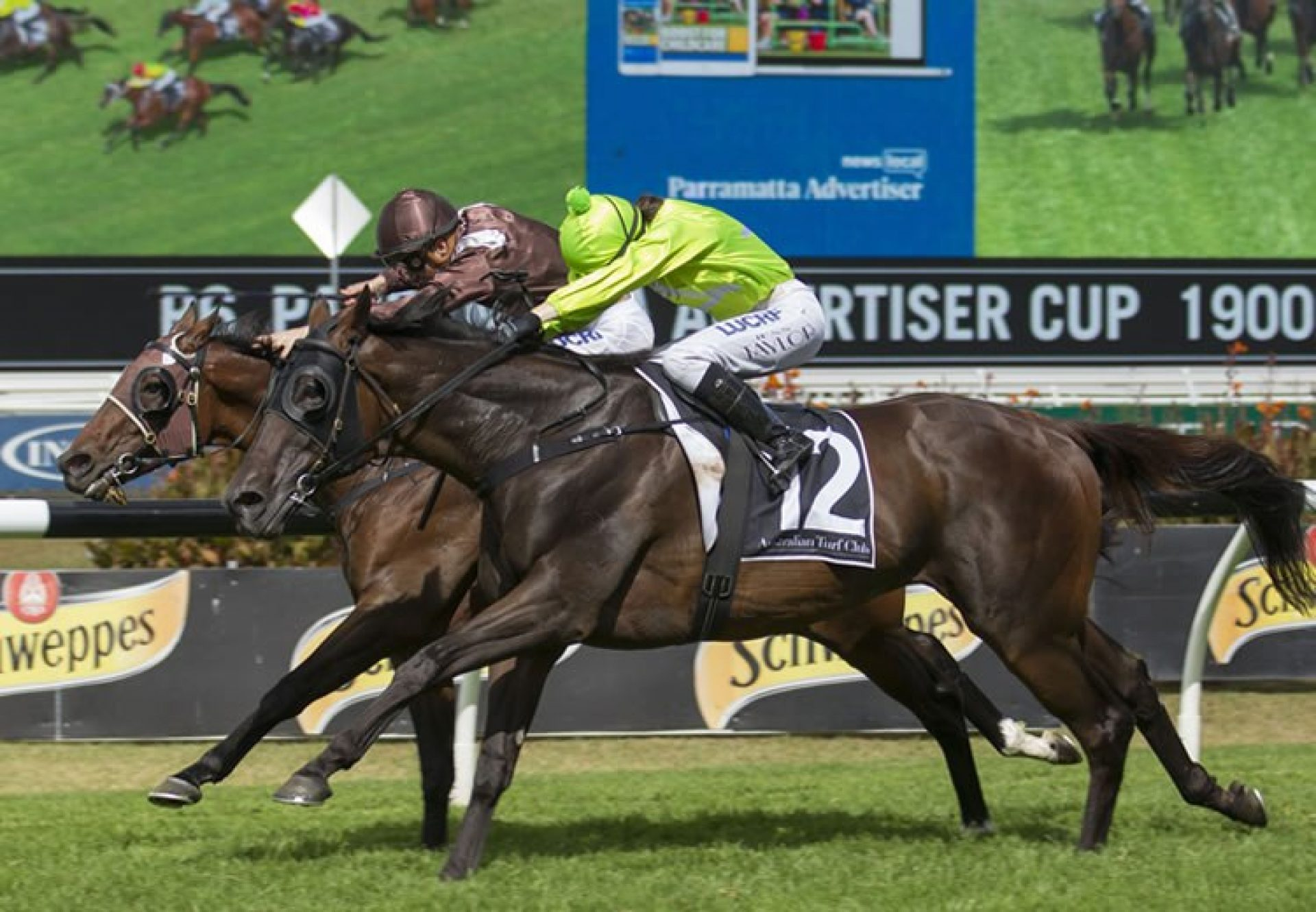 More Energy (Fastnet Rock) winning the Listed ATC Parramatta Cup at Rosehill