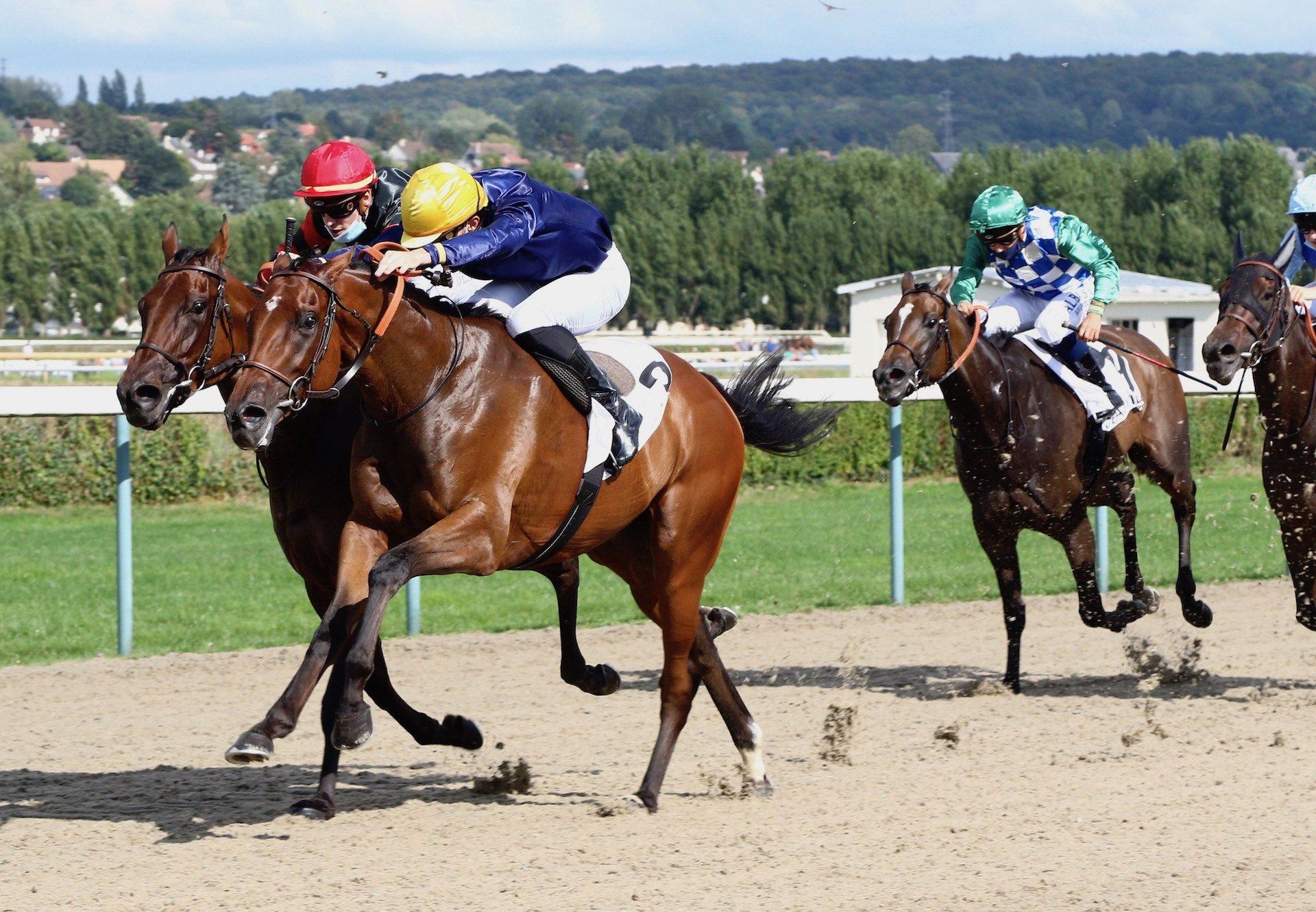 Mr De Pourceaugnac (Camelot) Wins At Deauville