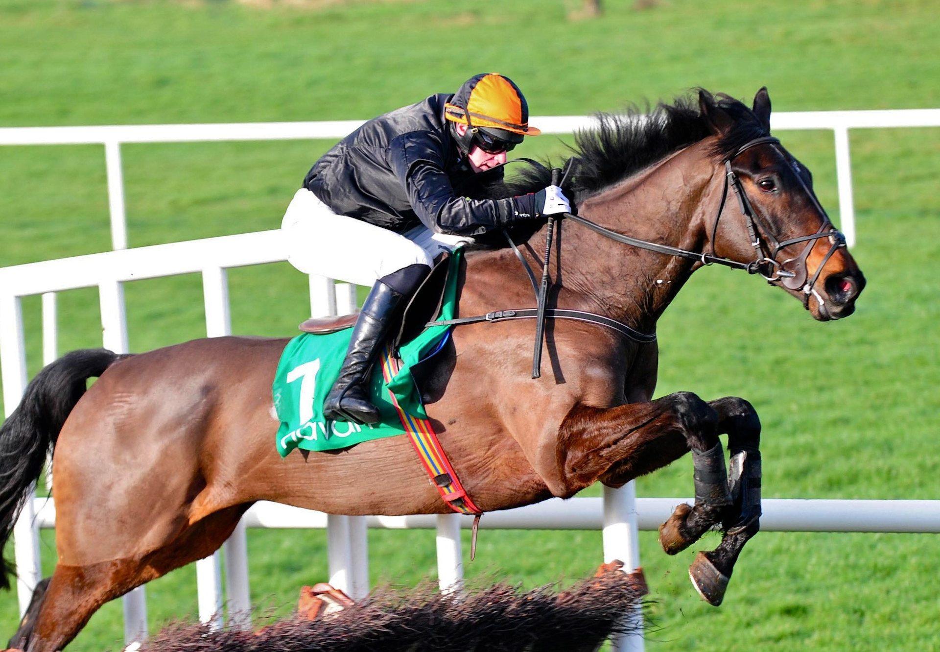 Mr Hendricks (Milan) Wins The Maiden Hurdle At Navan
