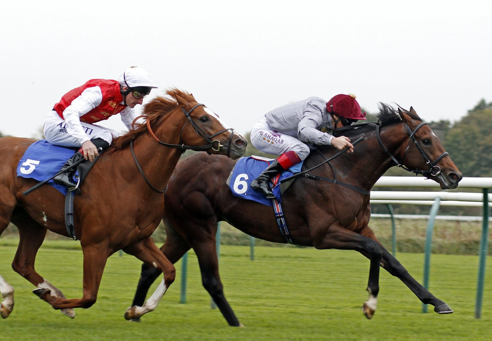 Msayyan Camelot Winning At Nottingham