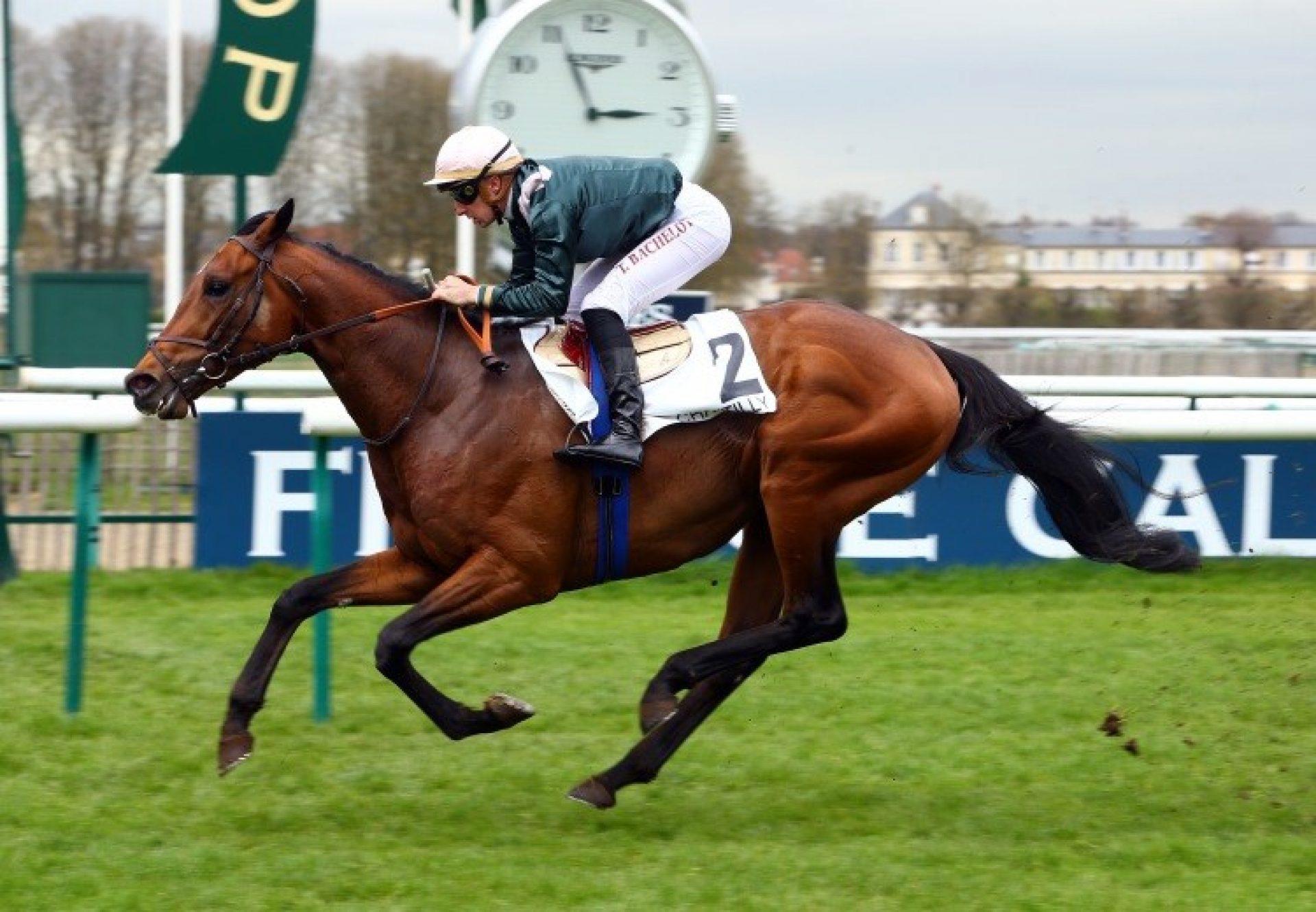 Naturally High (Camelot) winning the Prix du Pont du Roi at Chantilly