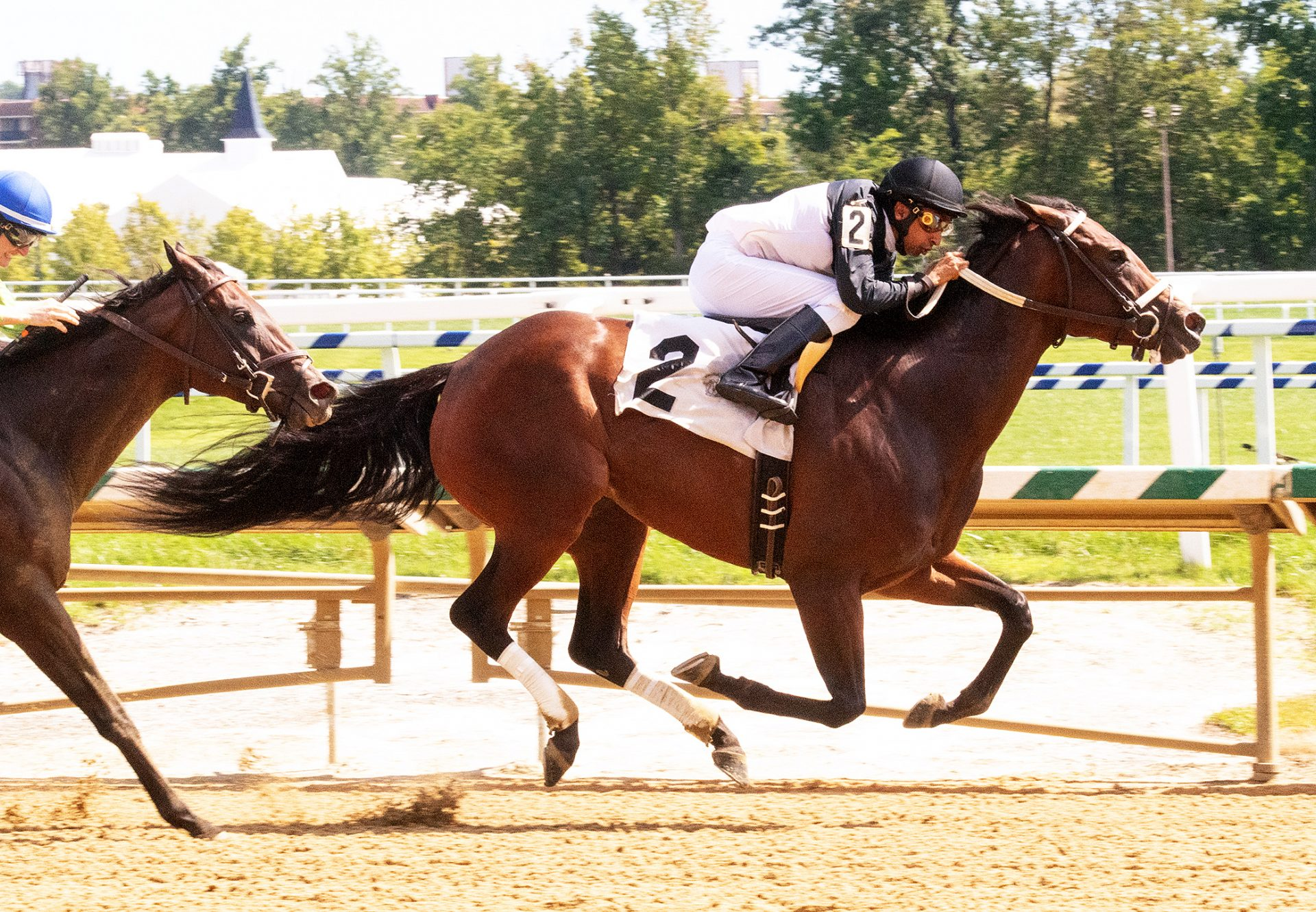 Never Enough Time (Munnings) Wins Listed Alma North Stakes at Laurel Park