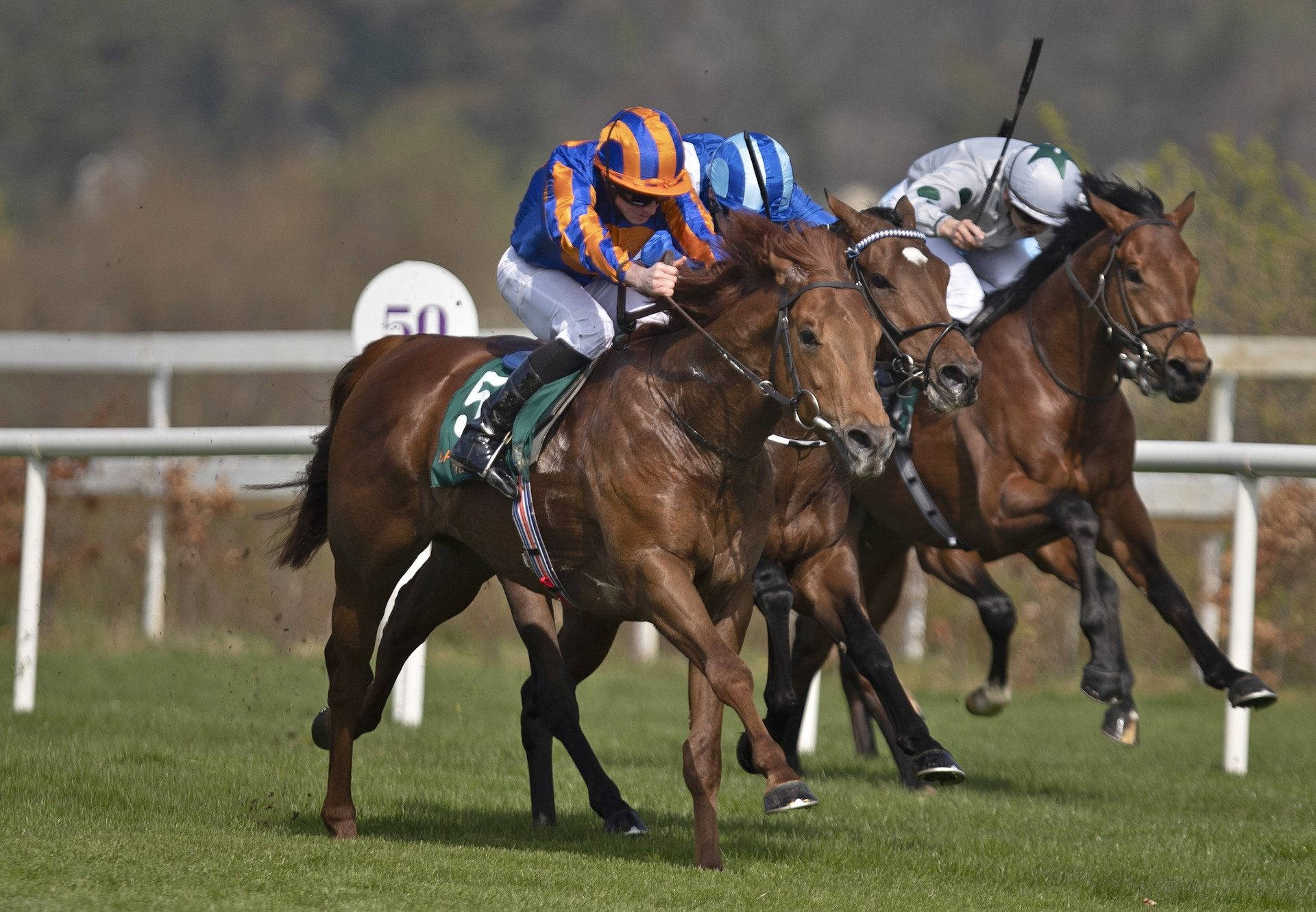 Never No More (No Nay Never) Lands The Guineas Trial at Leopardstown