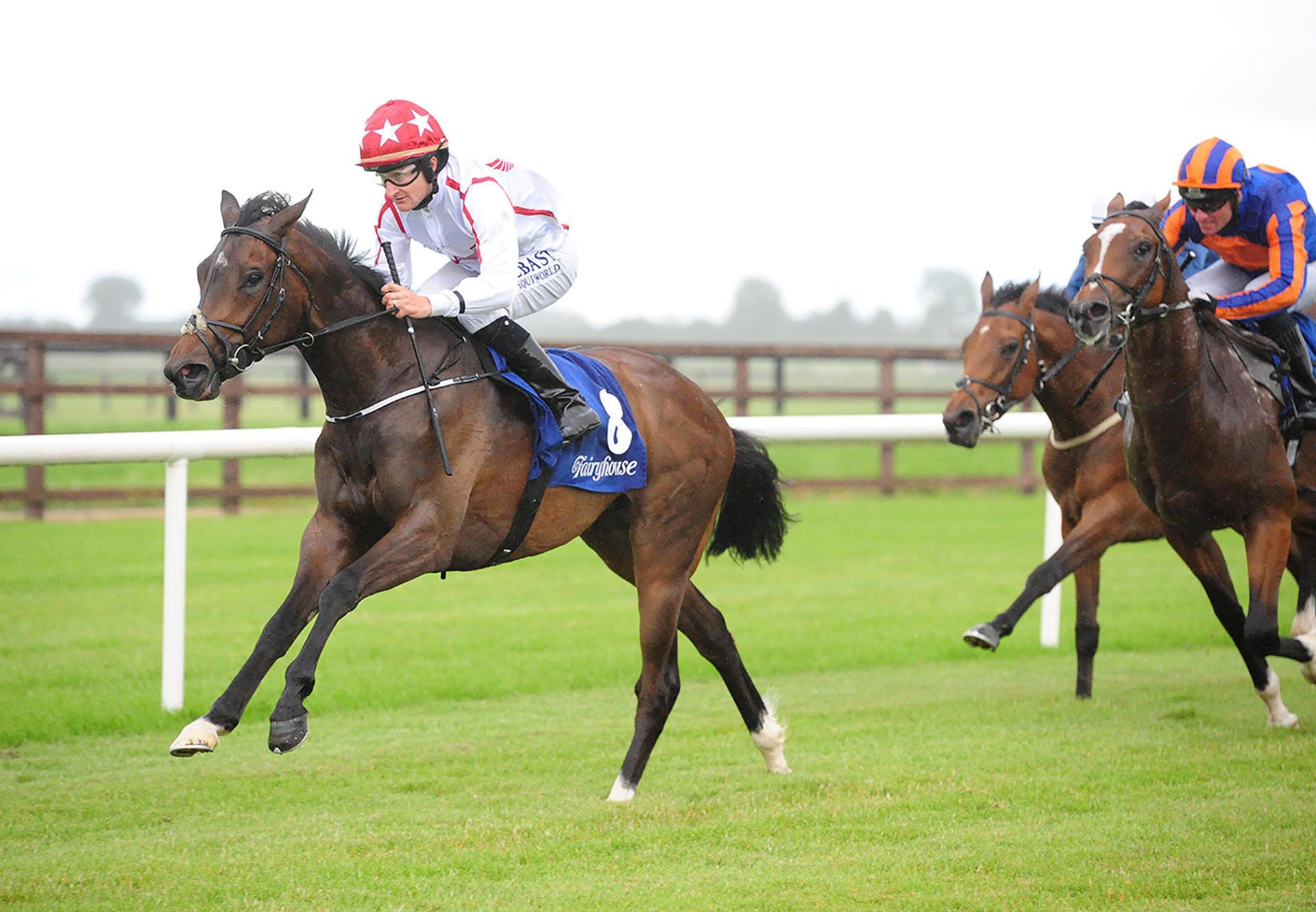 Nope (No Nay Never) winning at Fairyhouse