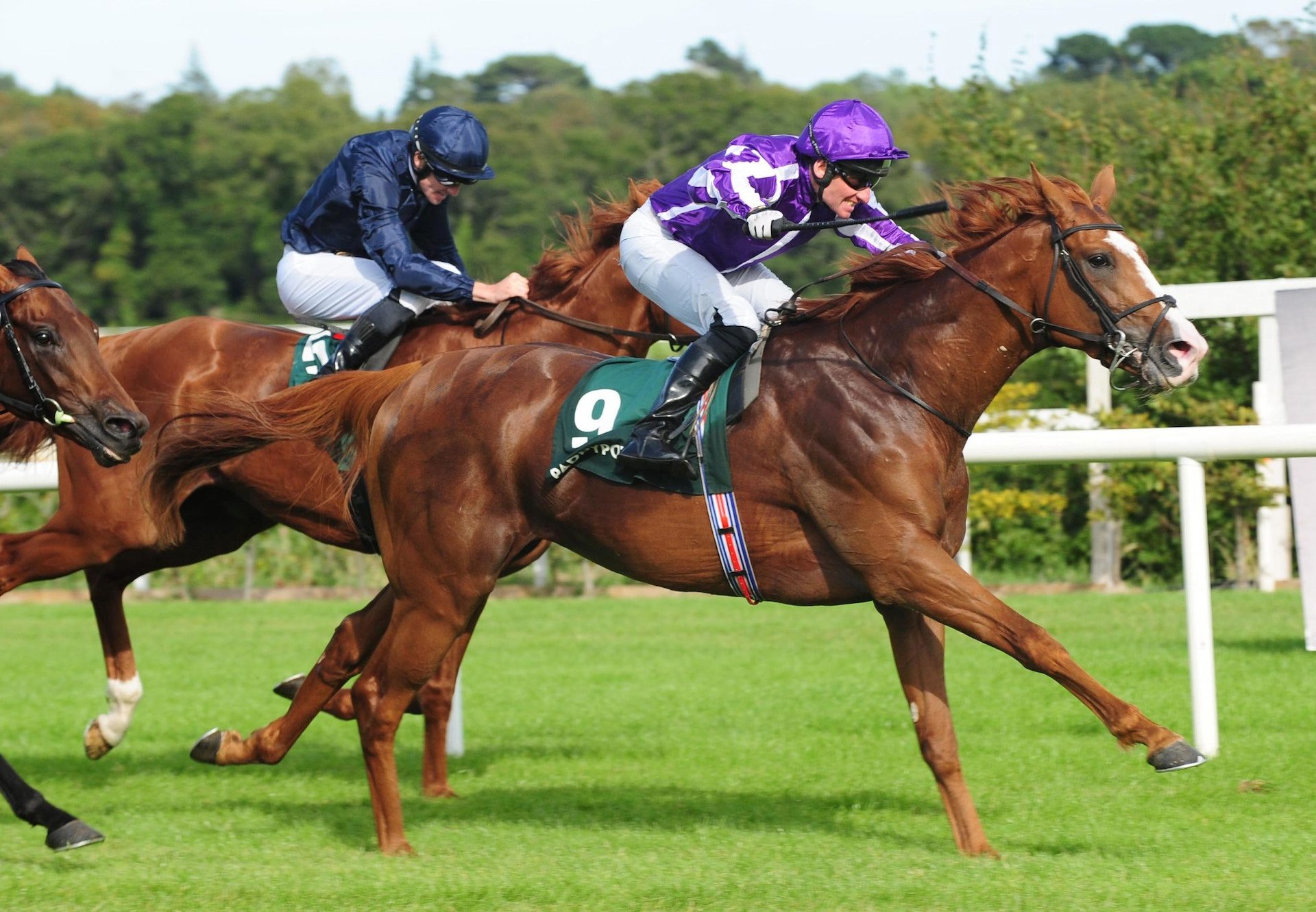 Norway (Galileo) Wins At Gr.3 Paddy Power Betting Shops Stakes at Leopardstown