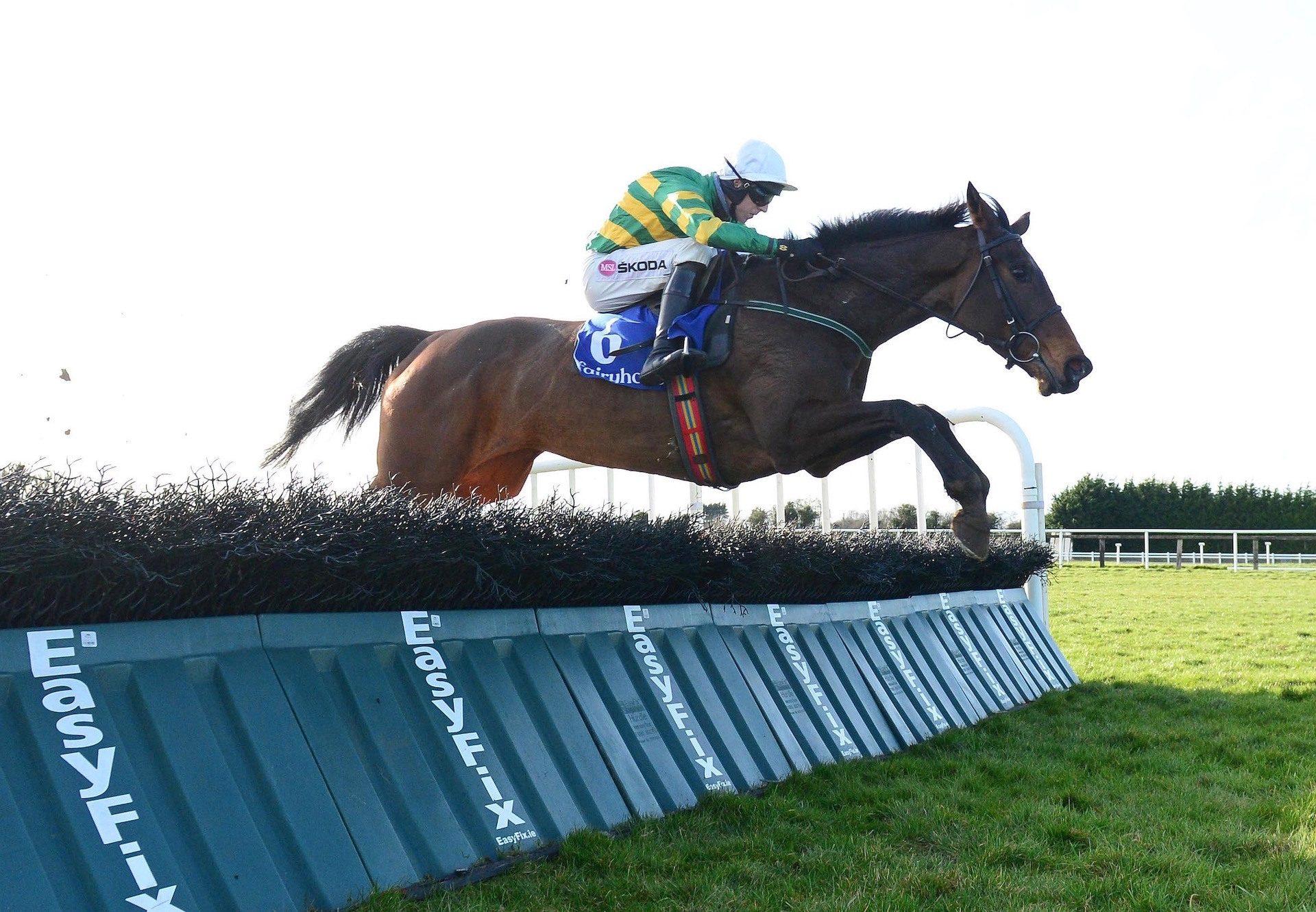 Norwigi (Yeats) Wins The Mares Maiden Hurdle At Fairyhouse
