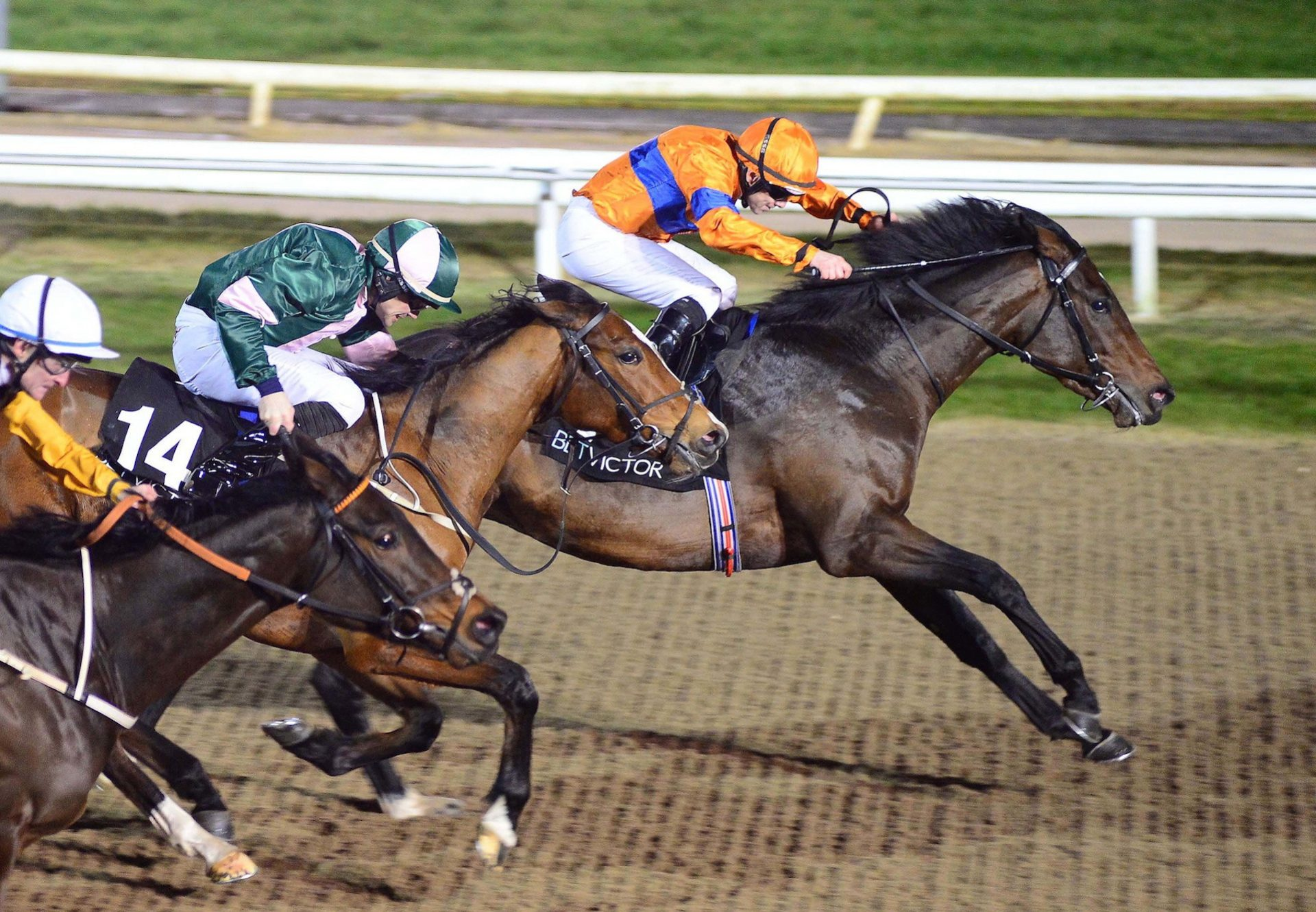 Numerian (Holy Roman Emperor) Wins His Maiden At Dundalk