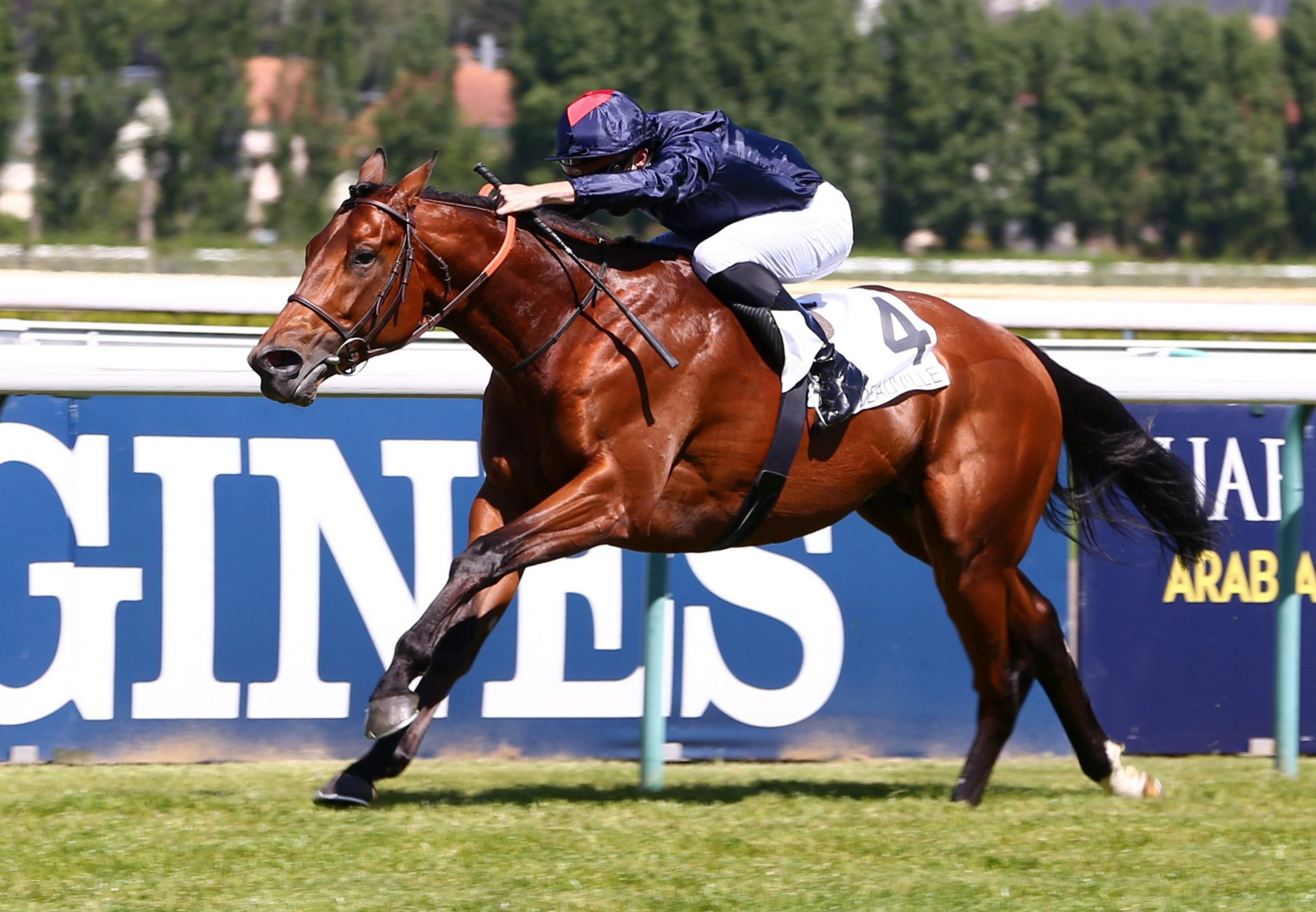 Ocean Atlantique (American Pharoah) wins the Listed Prix De Suresnes at Deuville