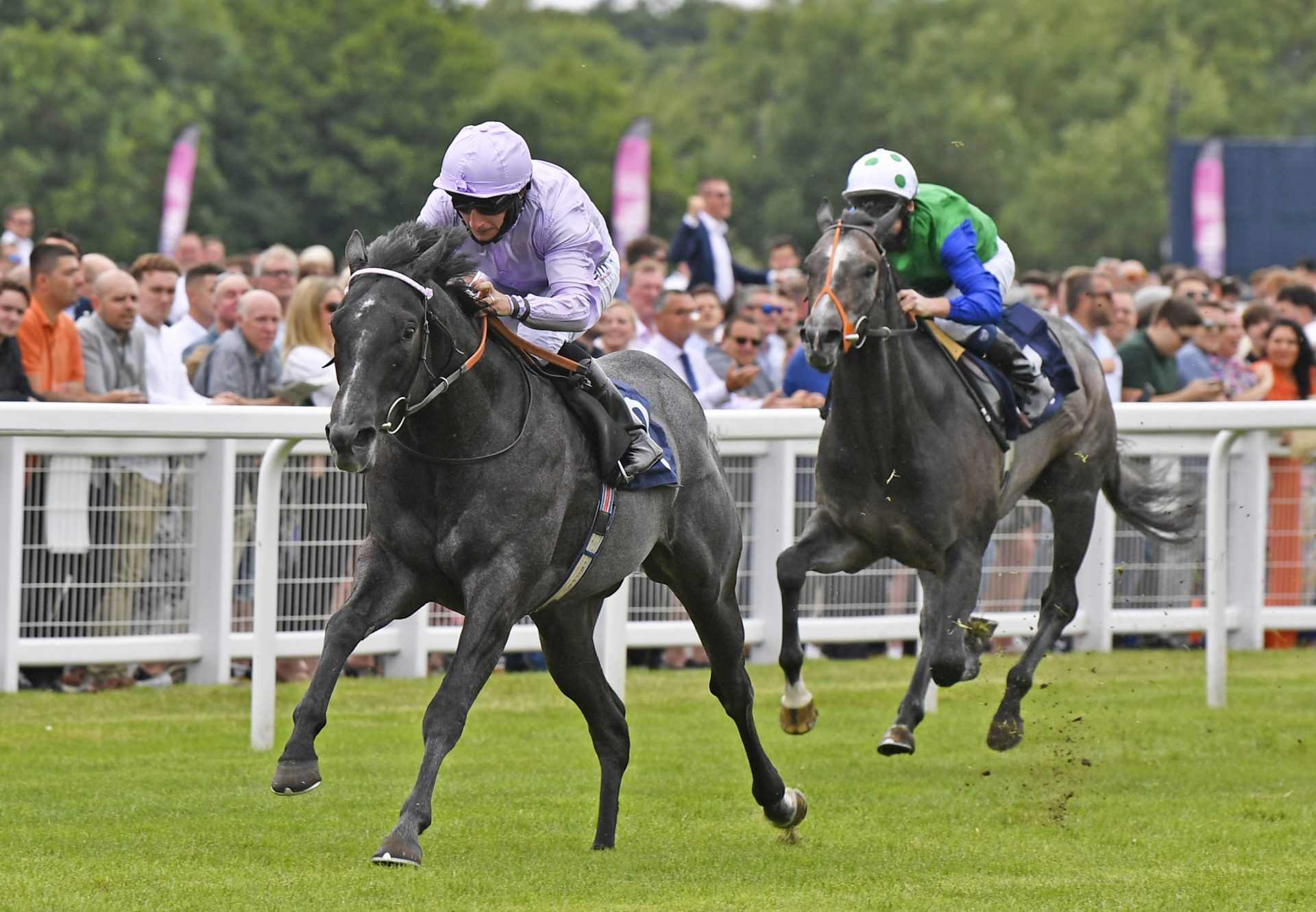 Nullifier Becomes No Nay Nevers 29th Juvenile Winner Of The 2019 Season