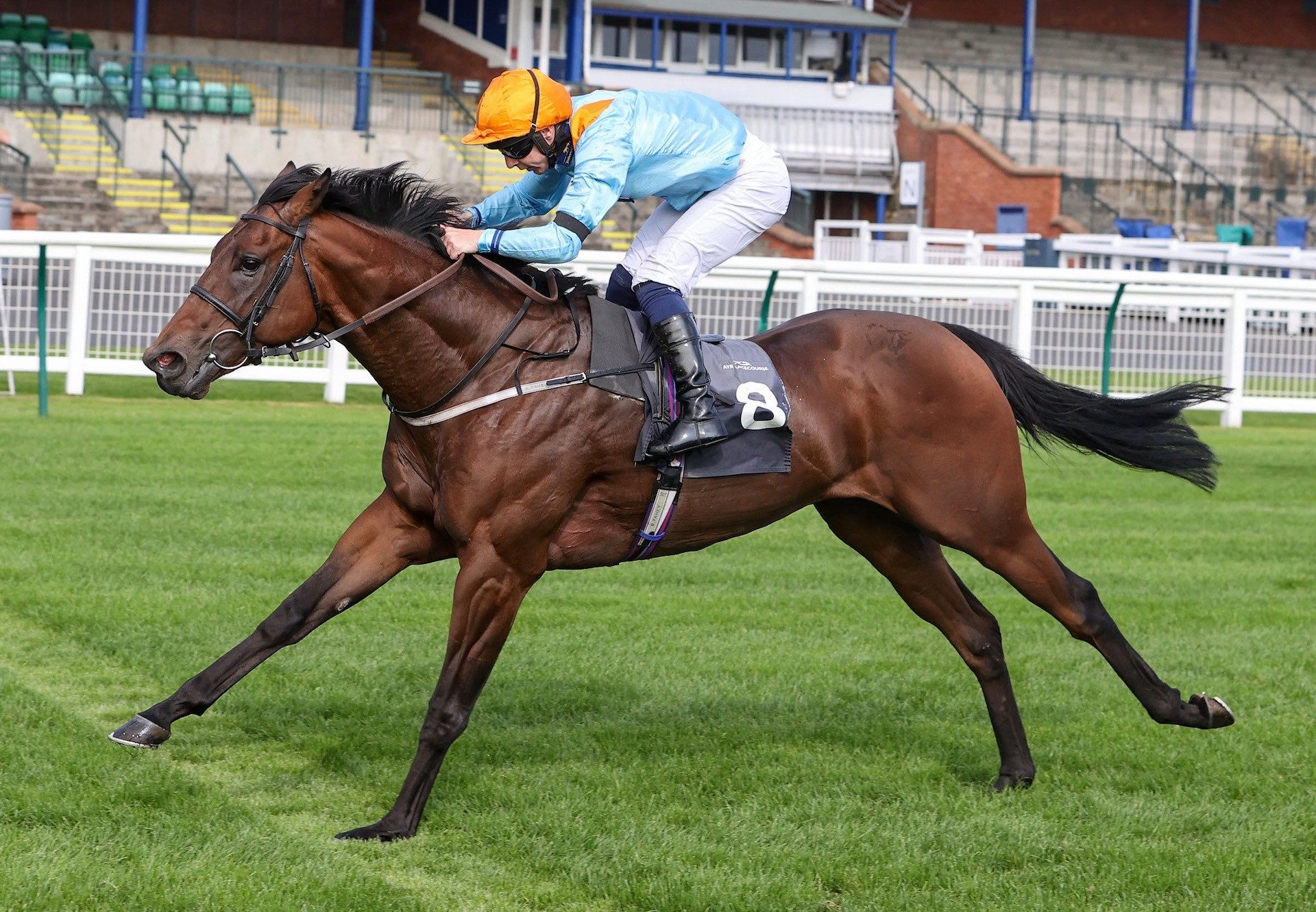Outrun The Storm (Footstepsinthesand) Wins At Ayr