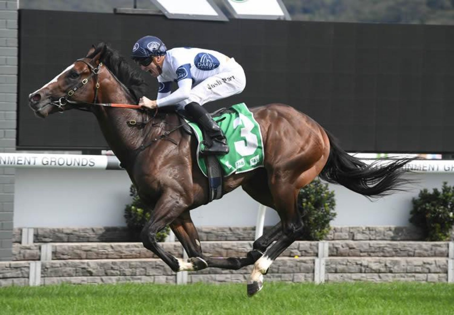Overpass (Vancouver) winning at Gosford