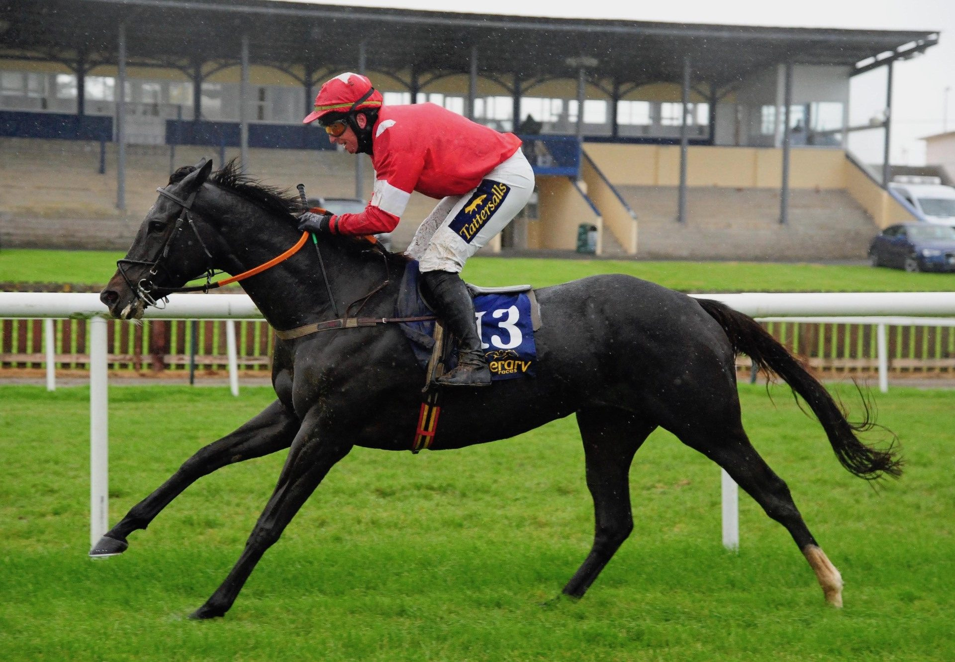 Party Central (Yeats) Makes A Winning Debut At Tipperary