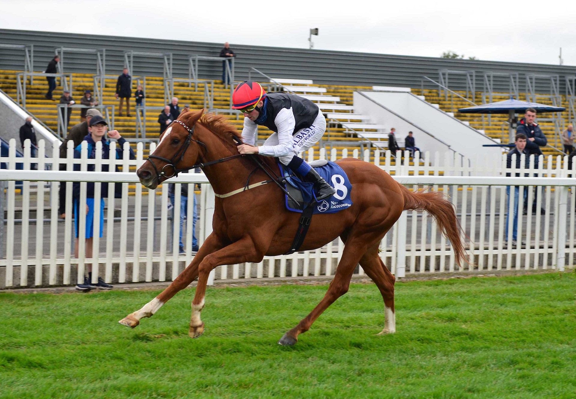 Withhold (Champs Elysees) winning the Cesarewitch Handicap at Newmarket