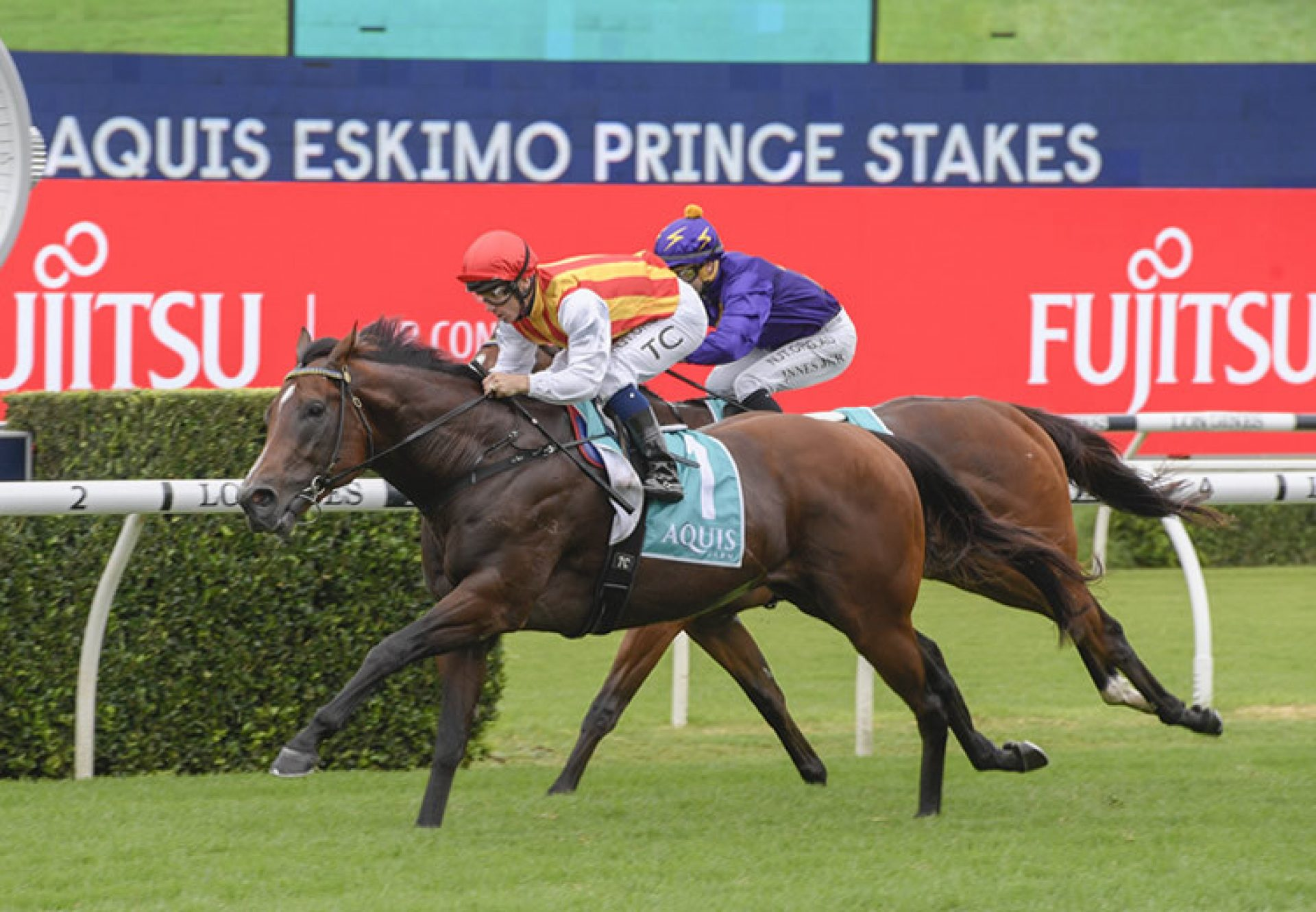 Peltzer (So You Think) winning the Gr.3 Eskimo Prince Stakes at Randwick