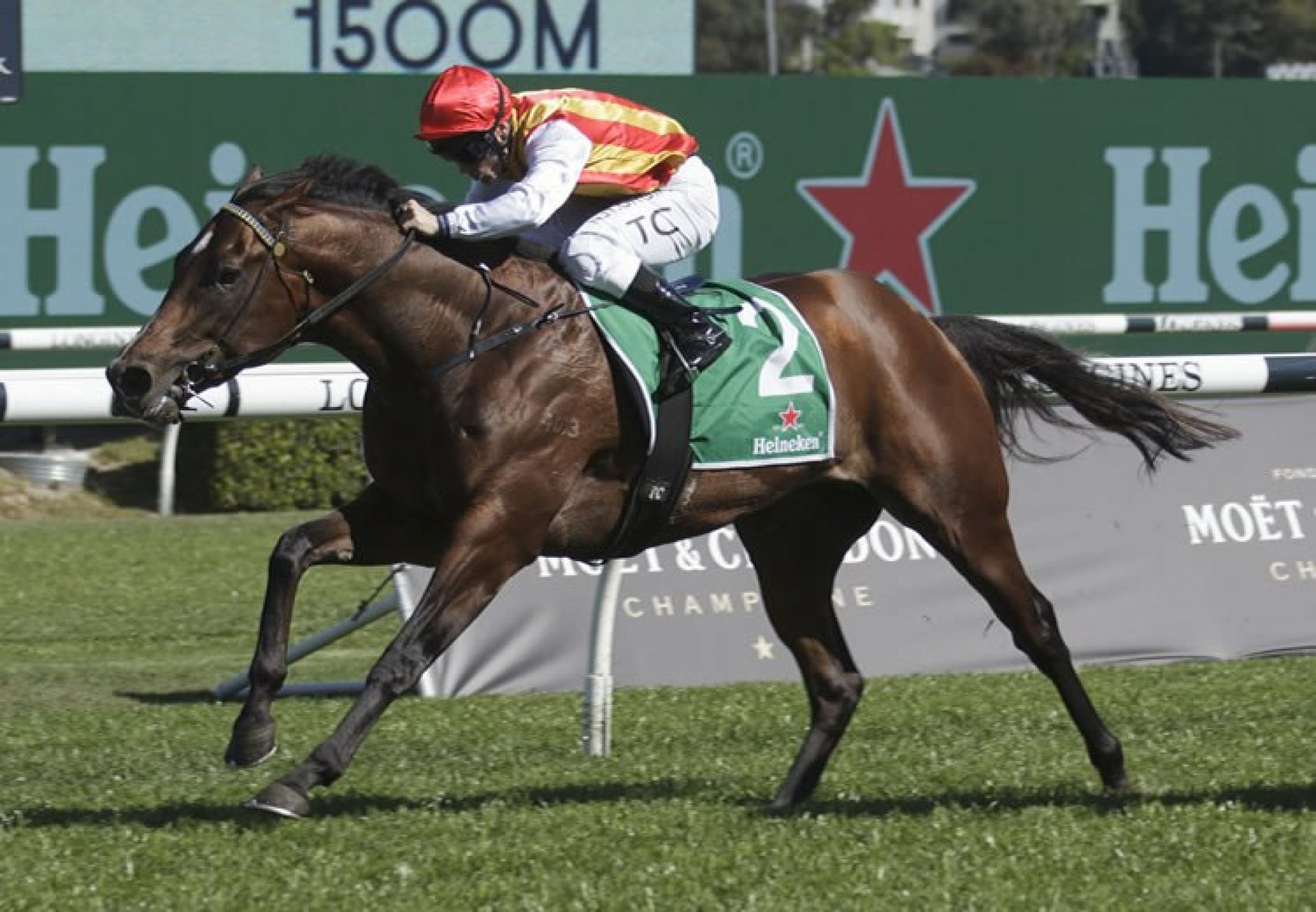 Peltzer (So You Think) wins the Gr.2 Stan Fox Stakes at Randwick