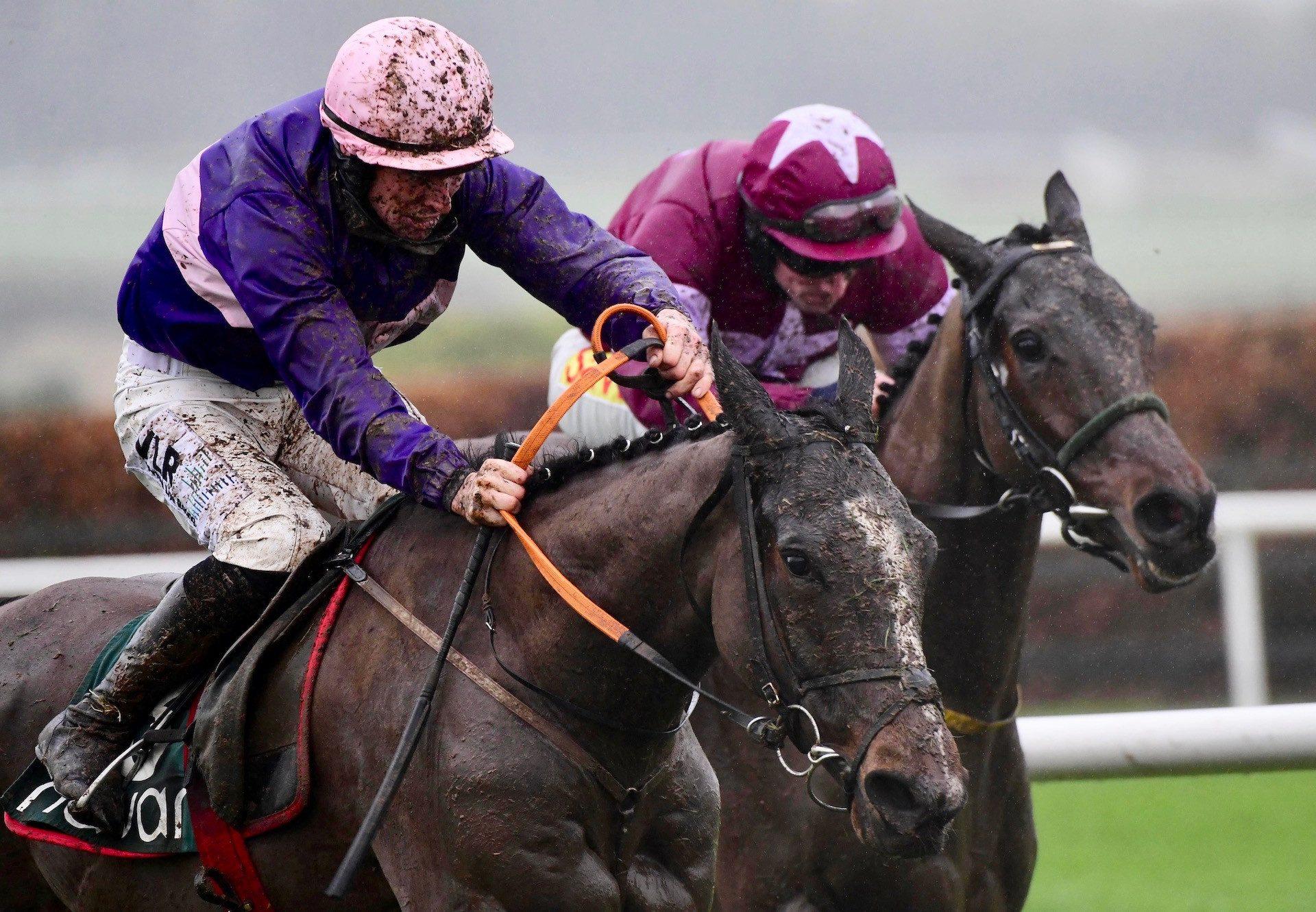 Percy Warner (Ocovango) Wins His Maiden Hurdle At Navan