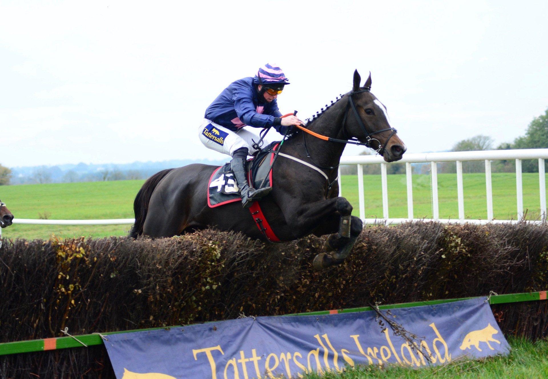 Iridessa (Ruler Of The World) winning a maiden at Killarney