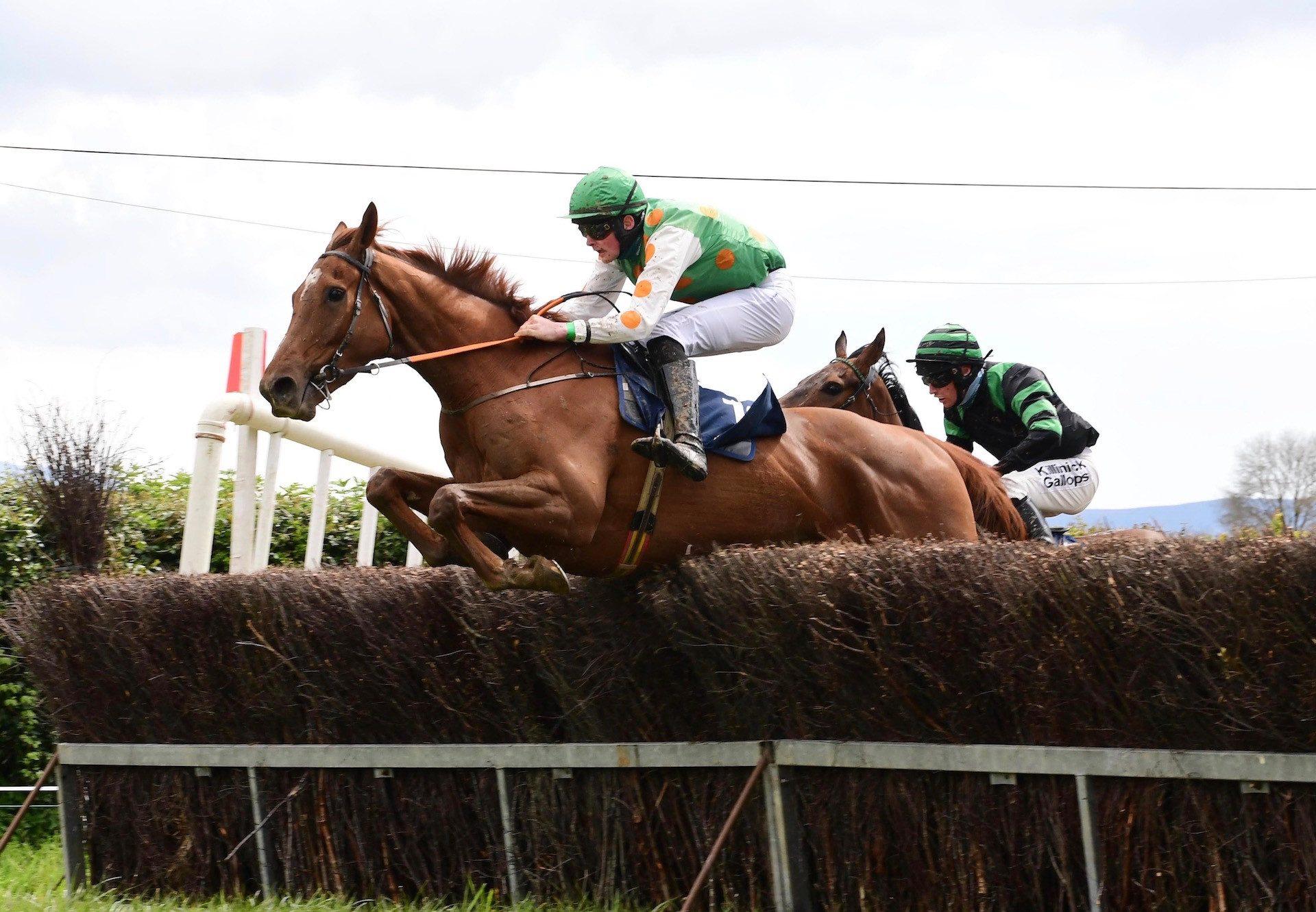 Phantom Getaway (Getaway) Wins The 4YO Maiden At Lisronagh