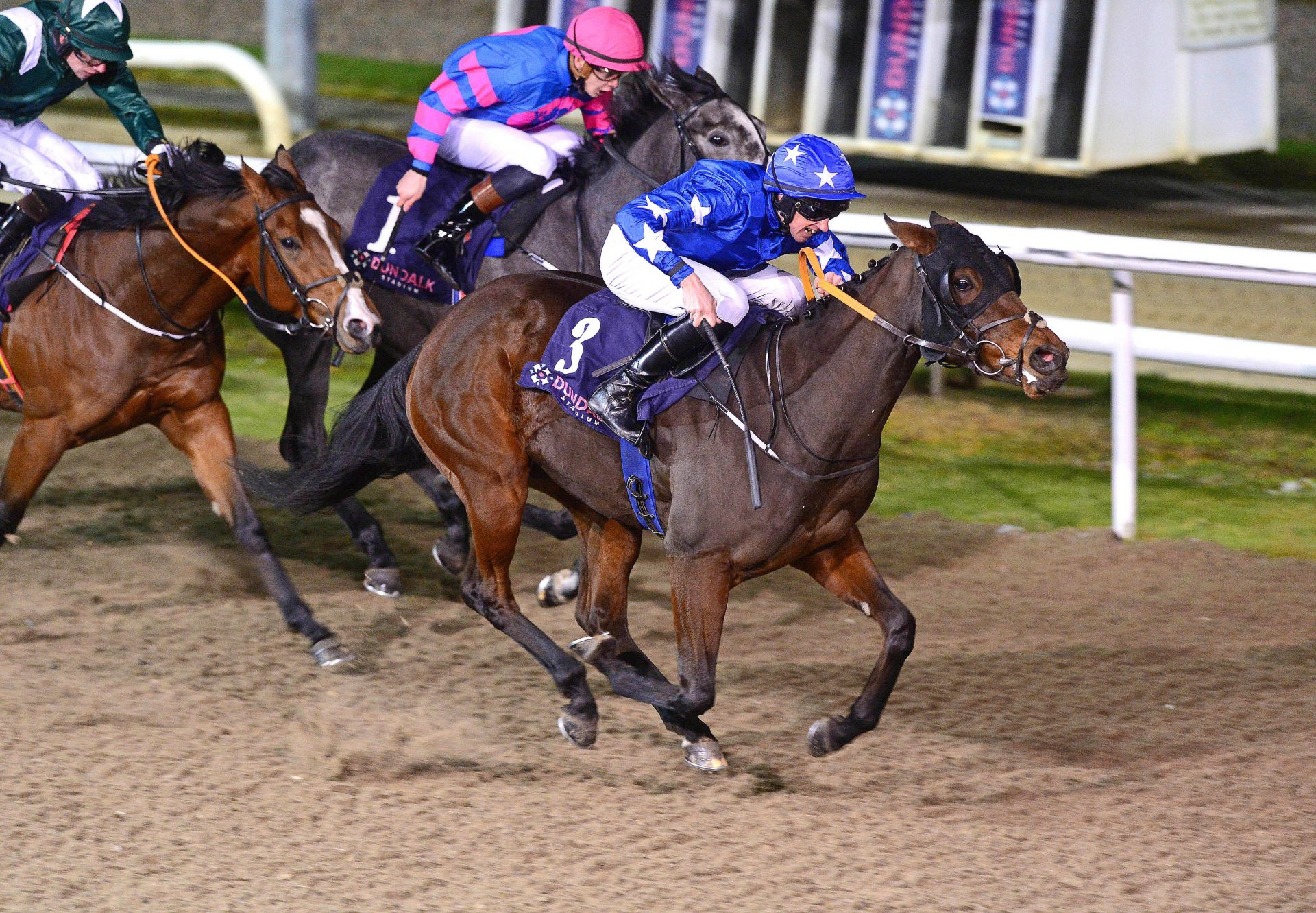 Point Reyes (Competitive Edge) Winning a Dundalk Maiden