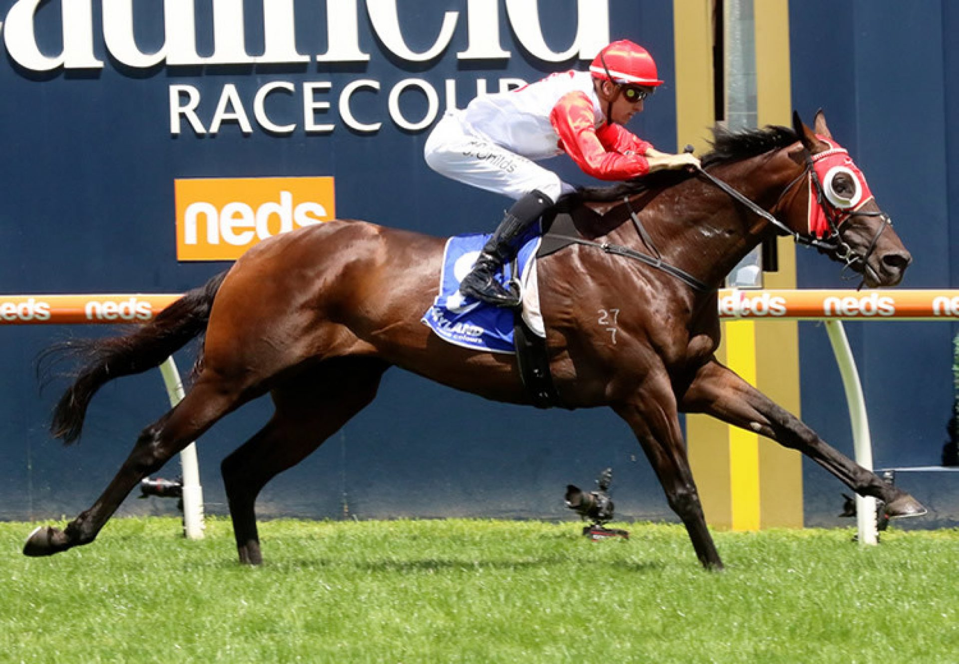 Poland (So You Think) wins the Gr.2 Autumns Stakes at Caulfield
