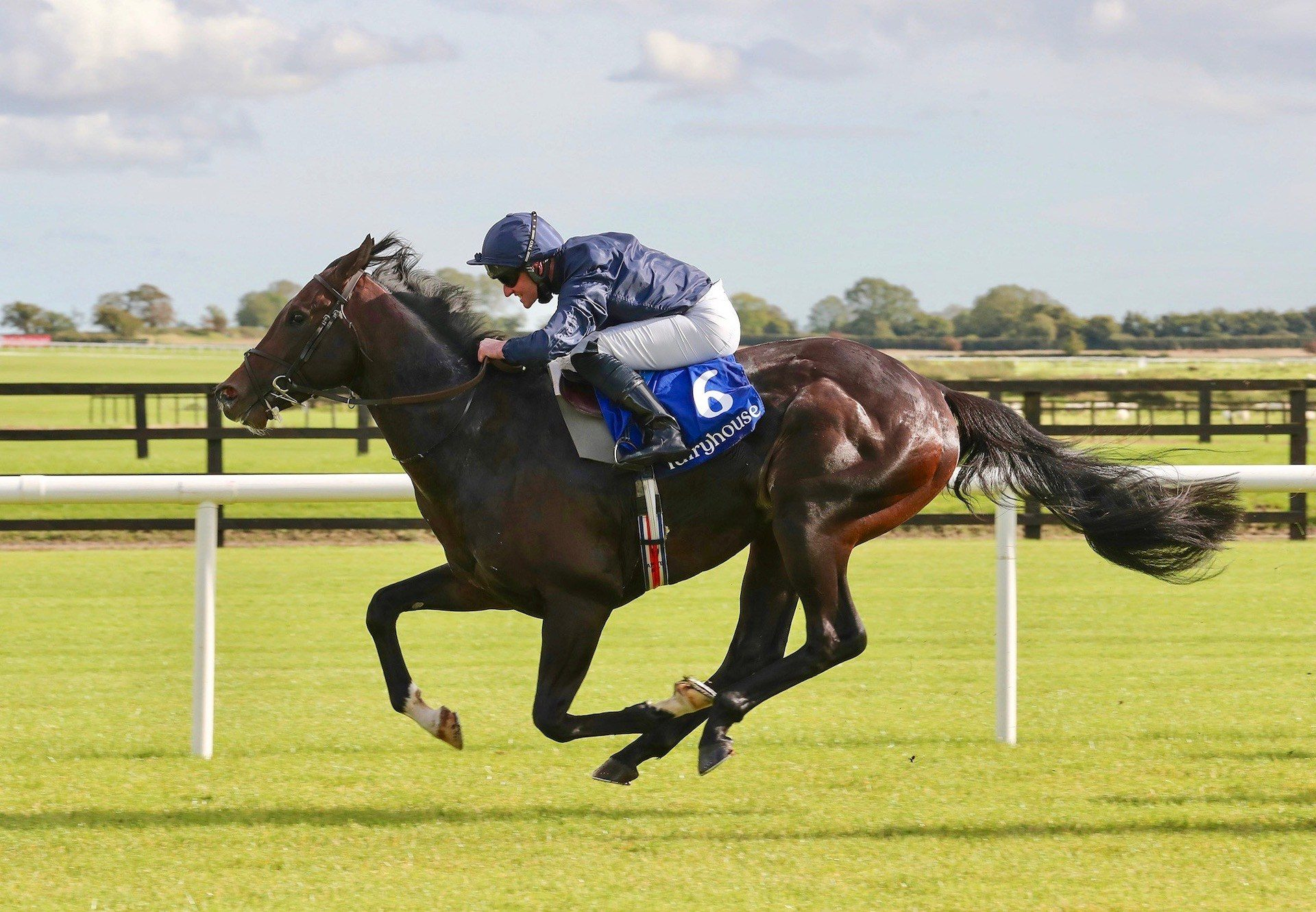 Preamble (No Nay Never) Wins His Maiden At Fairyhouse