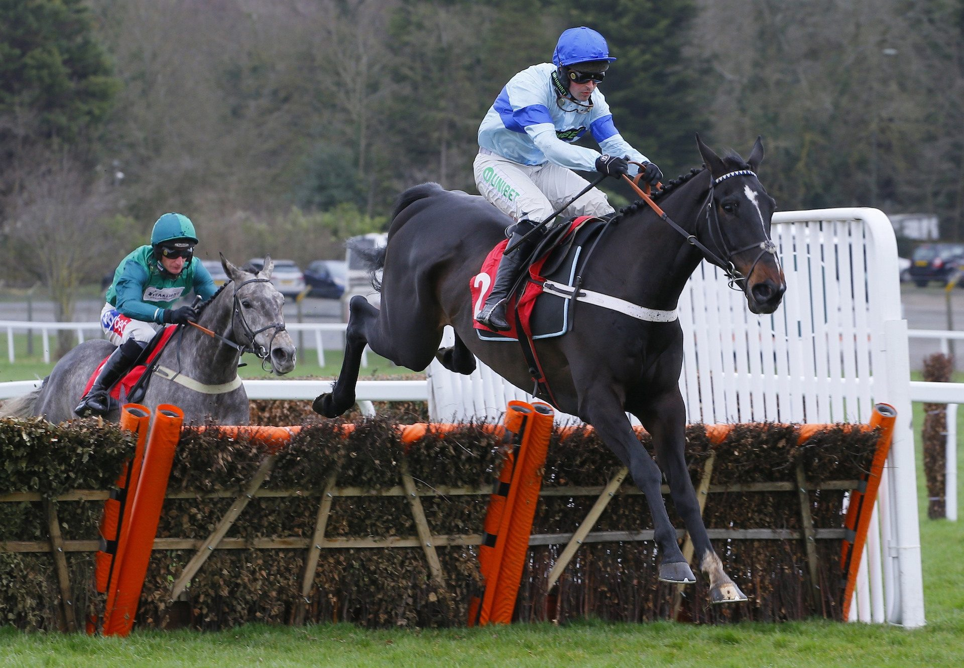Precious Cargo (Yeats) Makes It Two From Two Over Hurdles