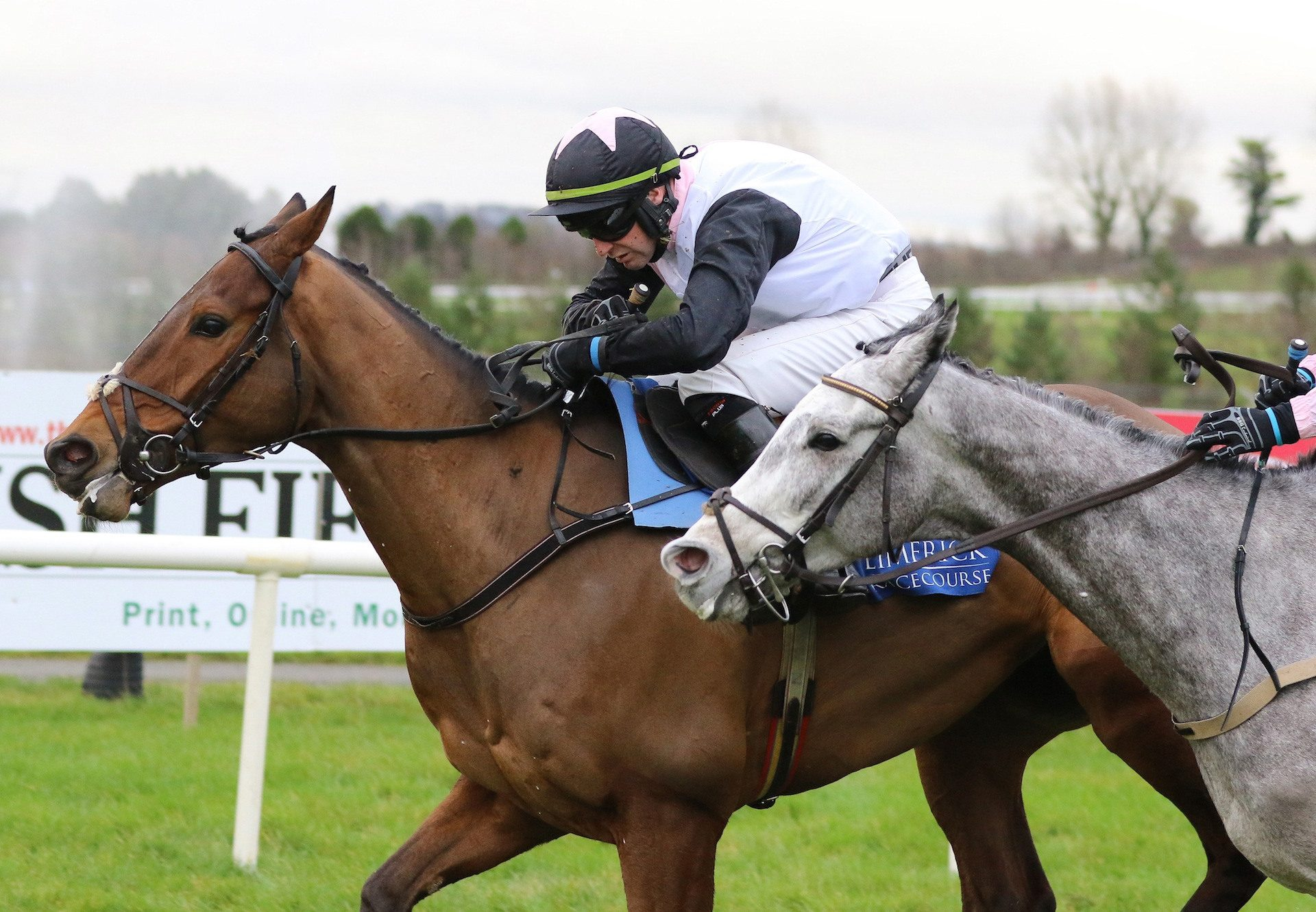 Press Conference (Getaway) Completes A Maiden Hurdle Double For Getaway