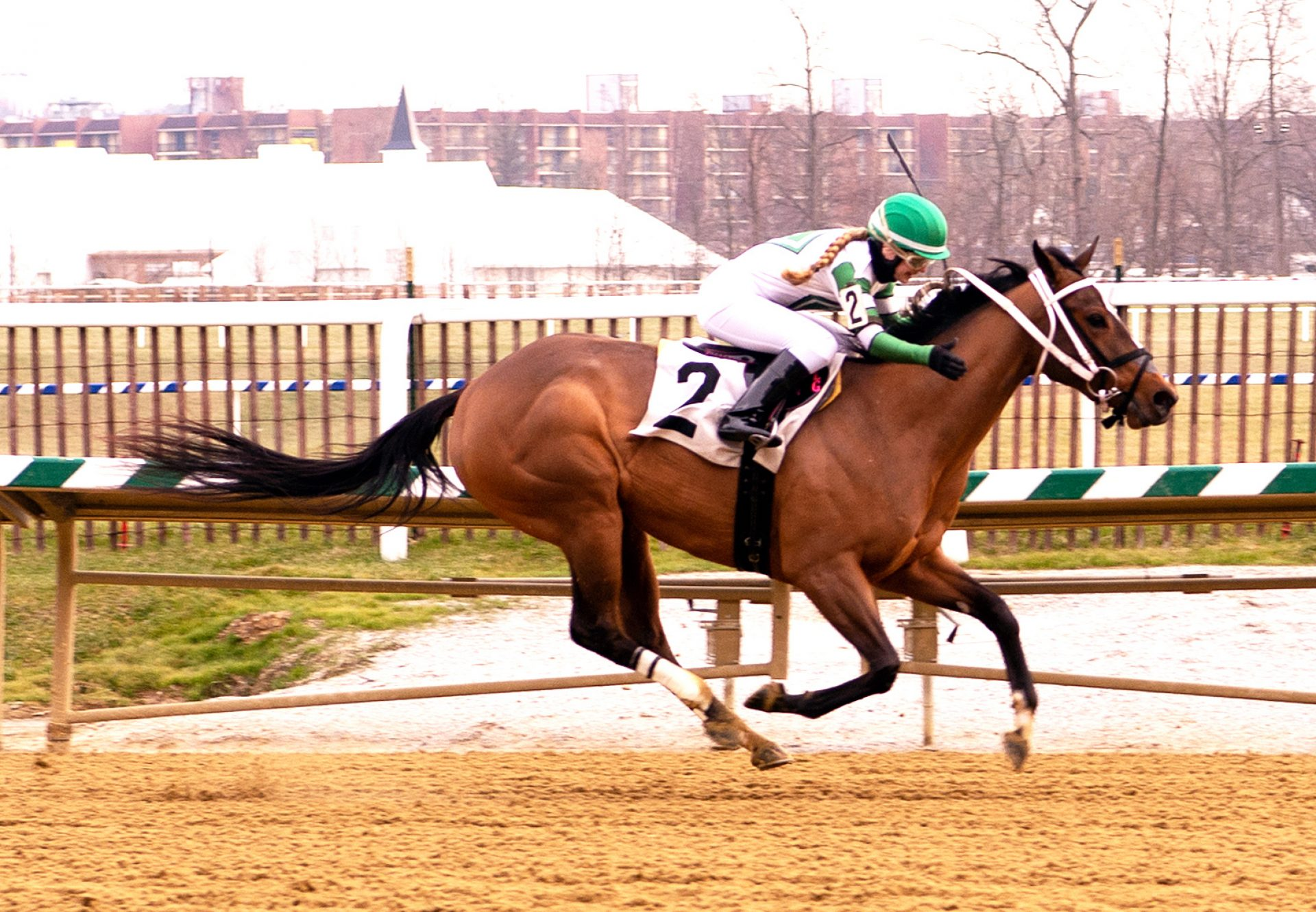 Pretty Edgy (Competitive Edge) Breaking her maiden at Laurel Park