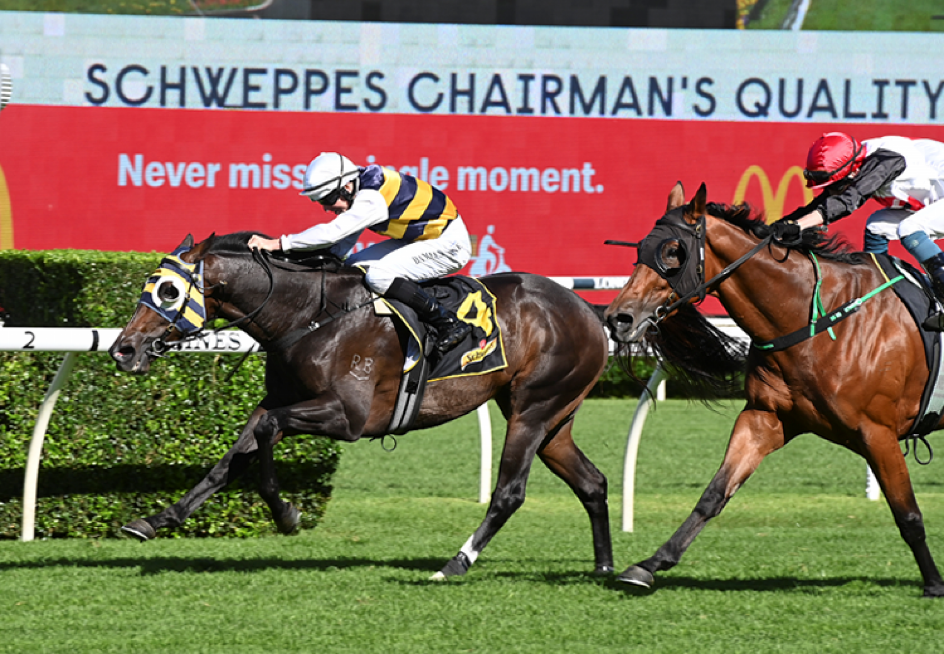 Quick Thinker (So You Think) wins the Gr.2 Chairmans Quality at Randwick