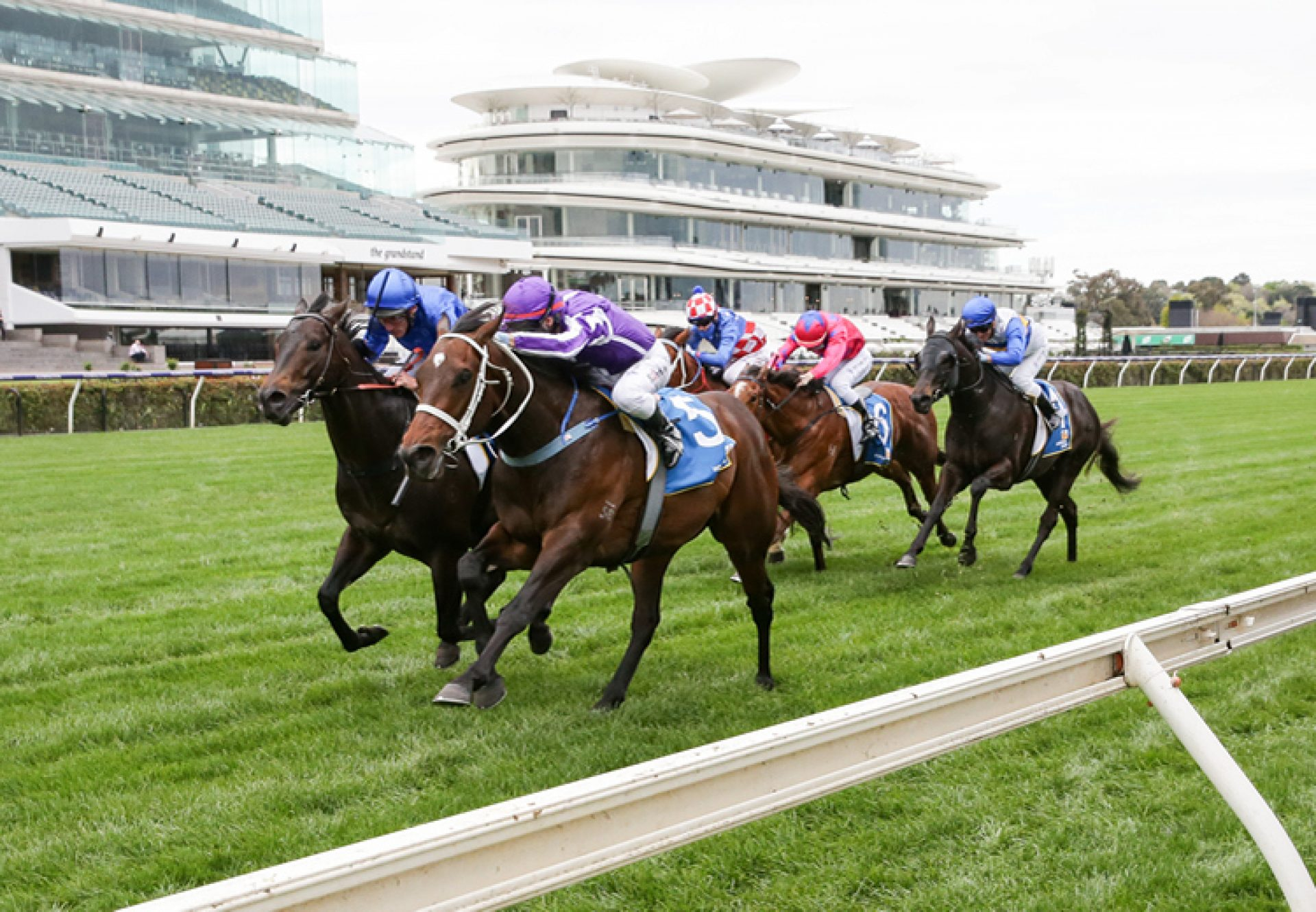 Ranch Hand (Fastnet Rock) winning the Listed Poseidon Stakes at Flemington