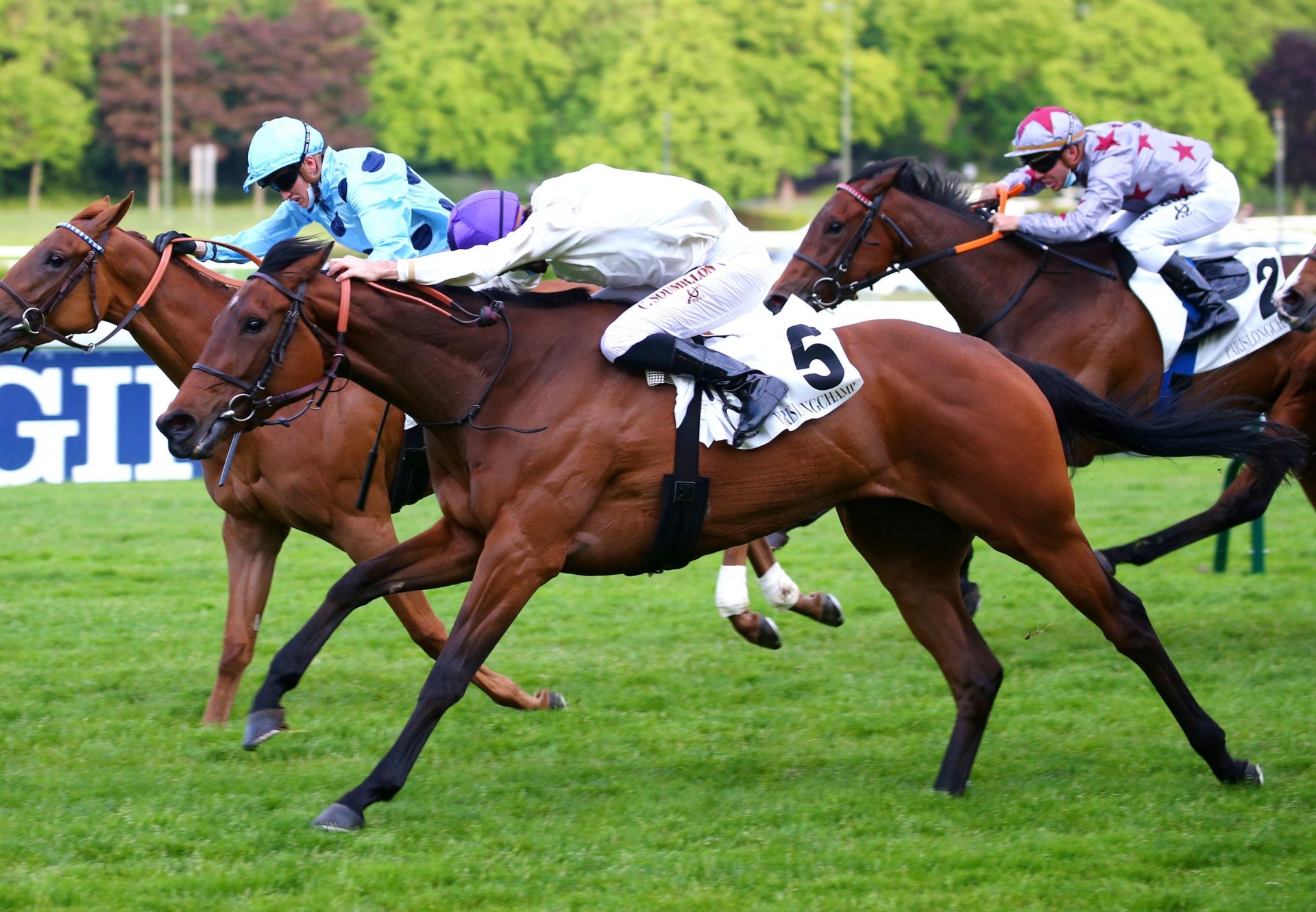 Ranes (Vadamos) Wins The Prix De La Megisserie At Longchamp
