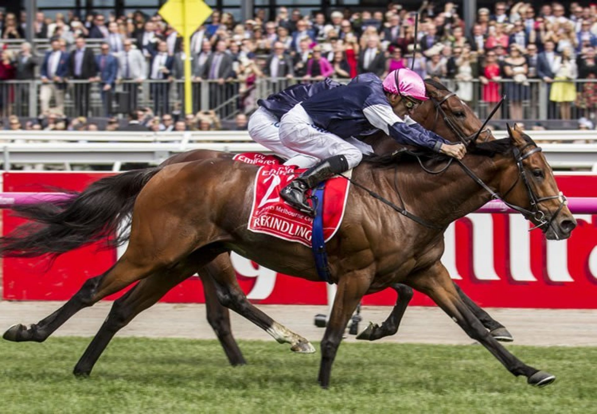 Rekindling (High Chaparral) winning the G1 Melbourne Cup at Flemington