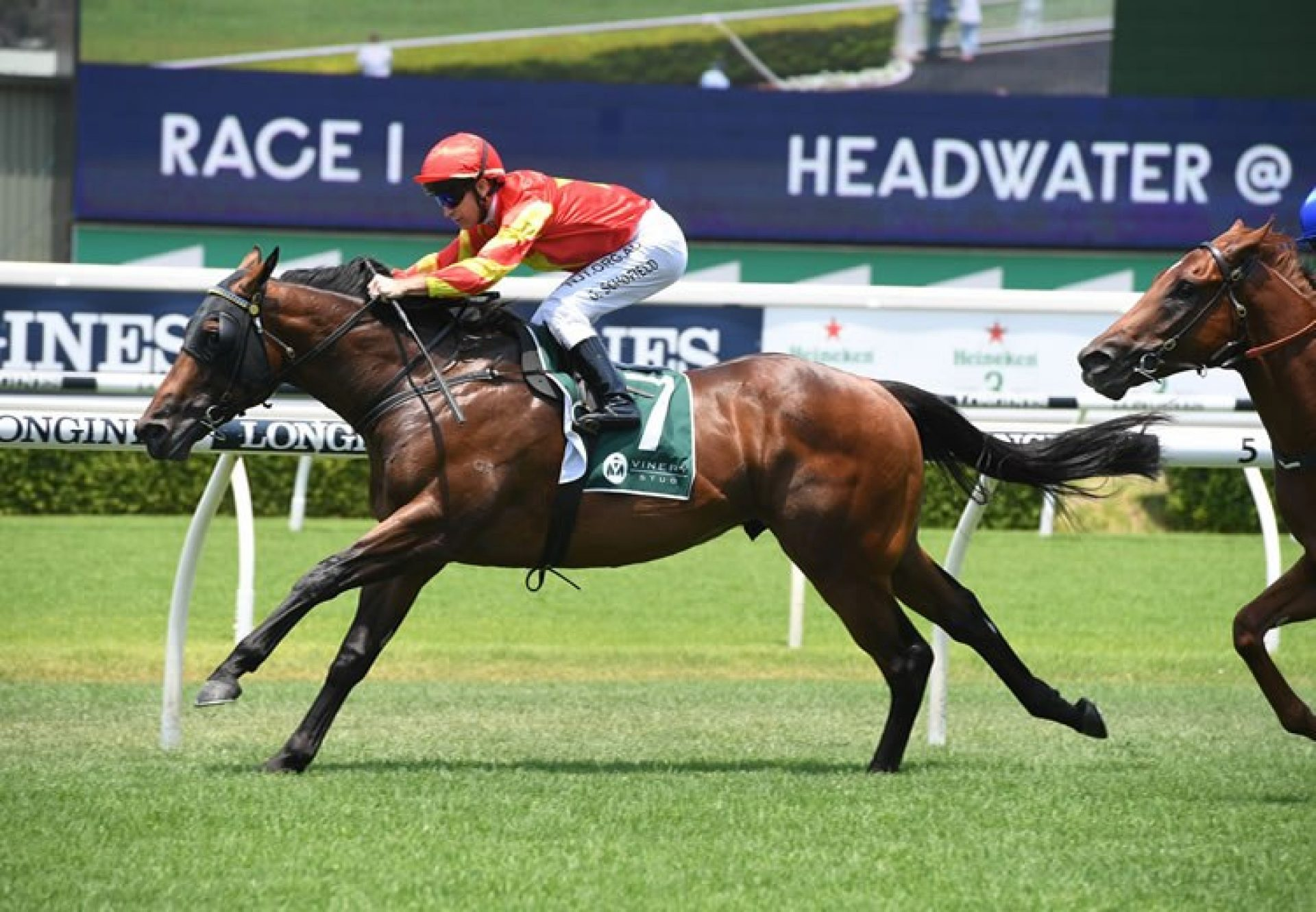 Return With Honour (Fastnet Rock) winning at Randwick