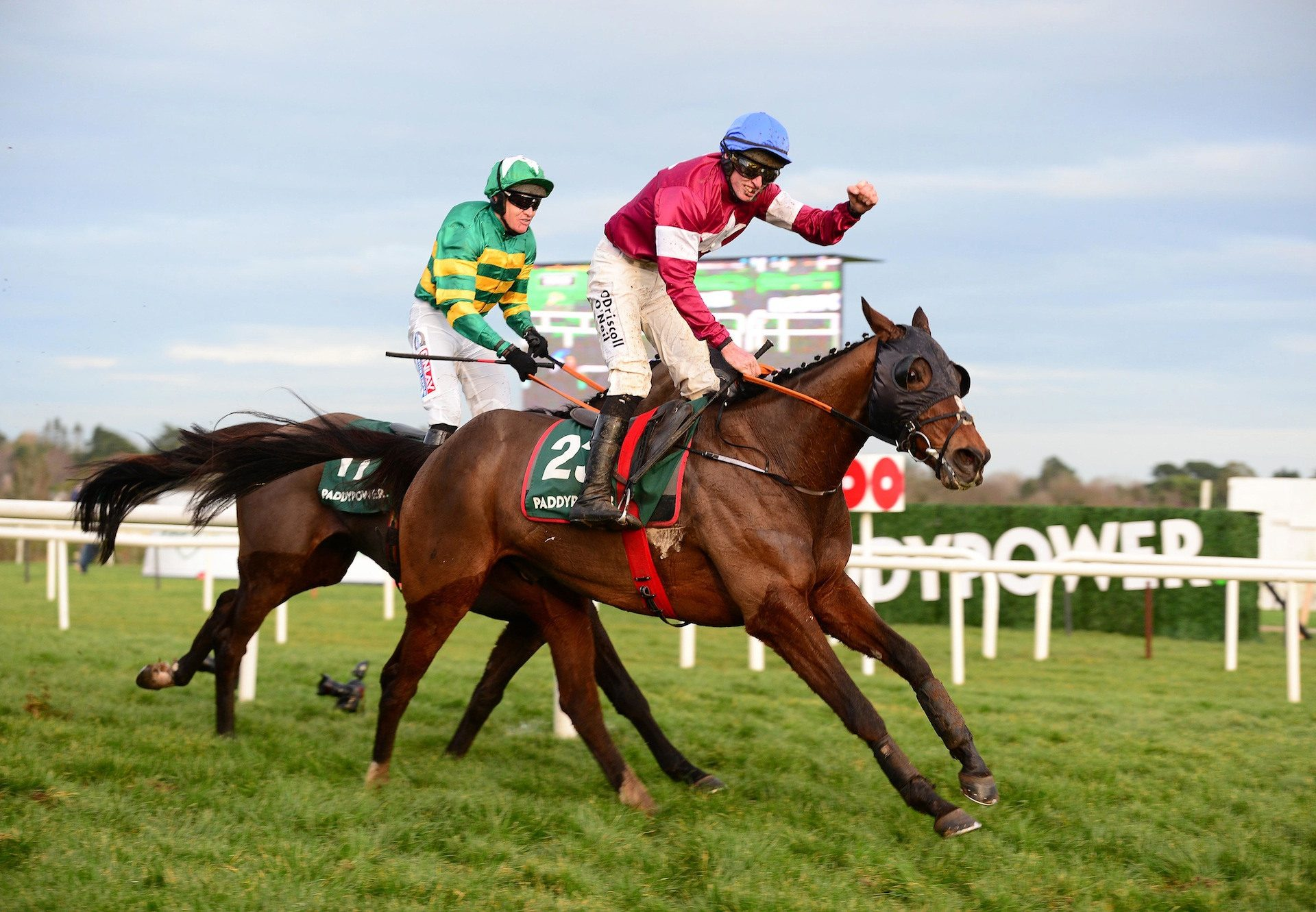 Roaring Bull (Milan) Wins The Paddy Power Chase At Leopardstown