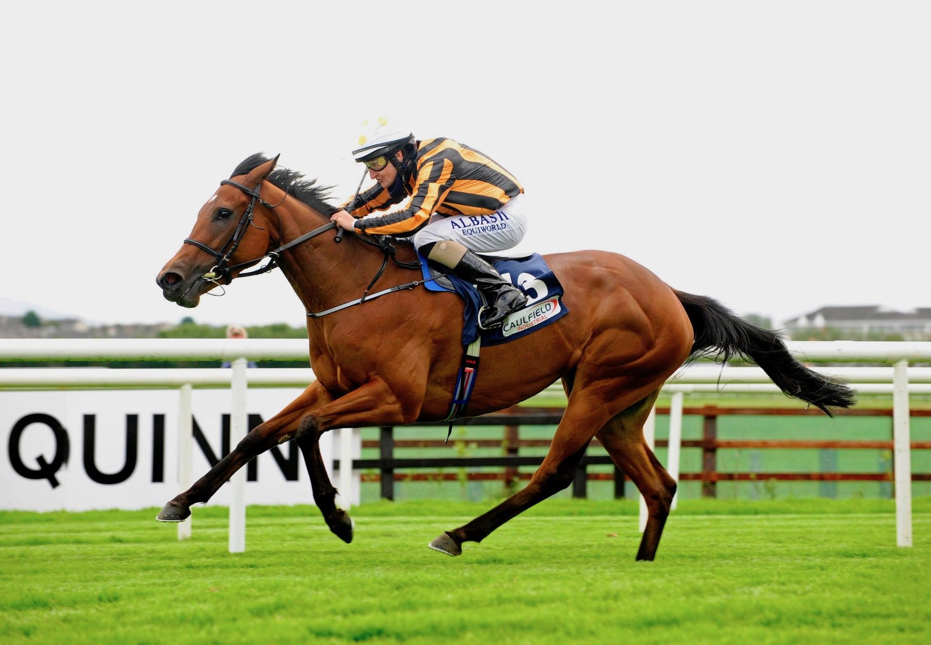 Rocket Science (Fastnet Rock) Wins Her Maiden At Galway