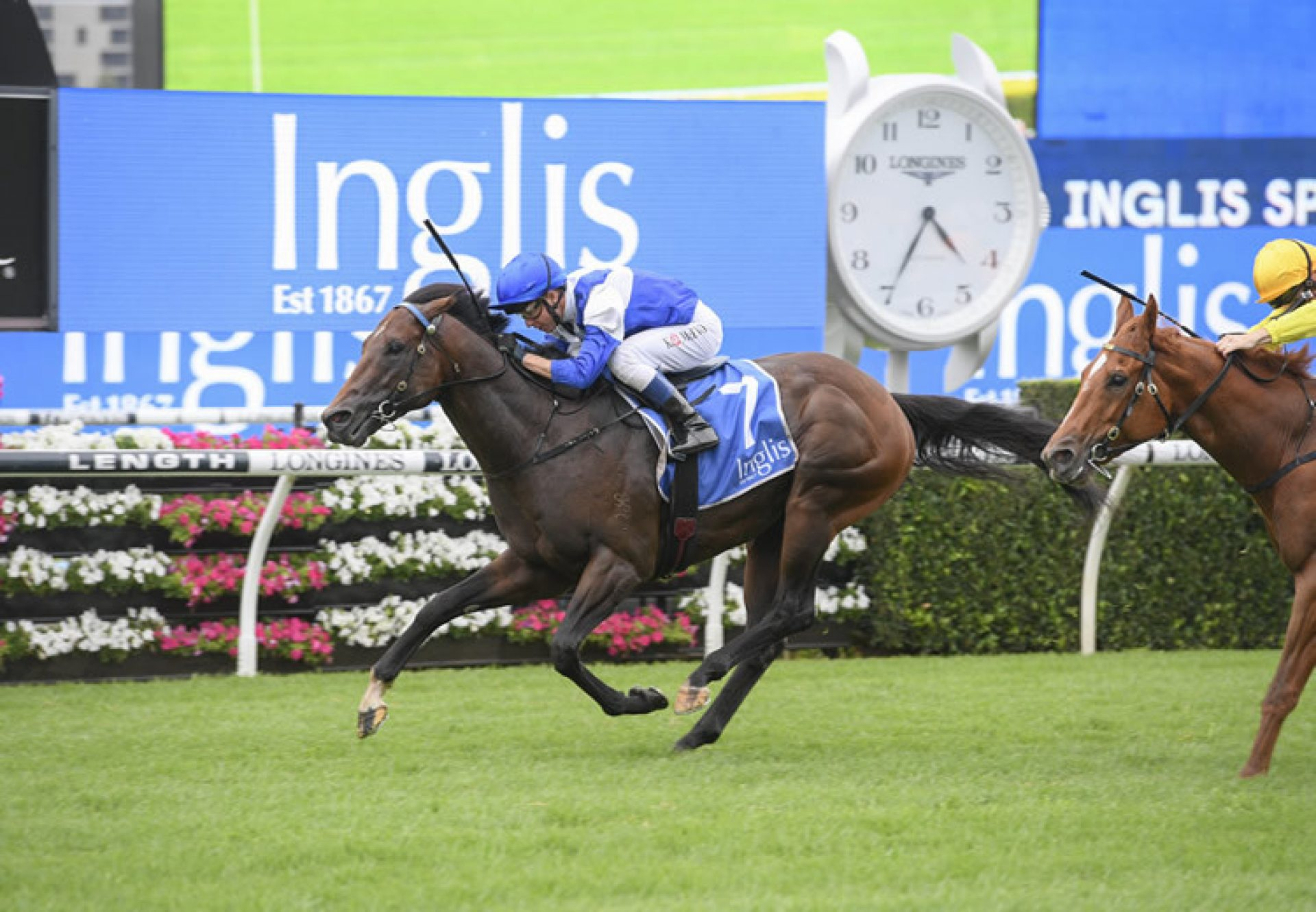 Rocketing By (So You Think) wins the Inglis Sprint at Randwick