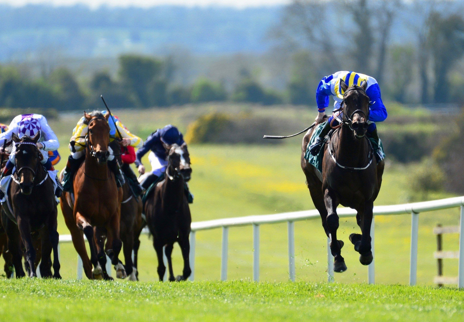 Rocky Sky (Rock Of Gibraltar) Wins The Listed Salsabil Stakes at Navan