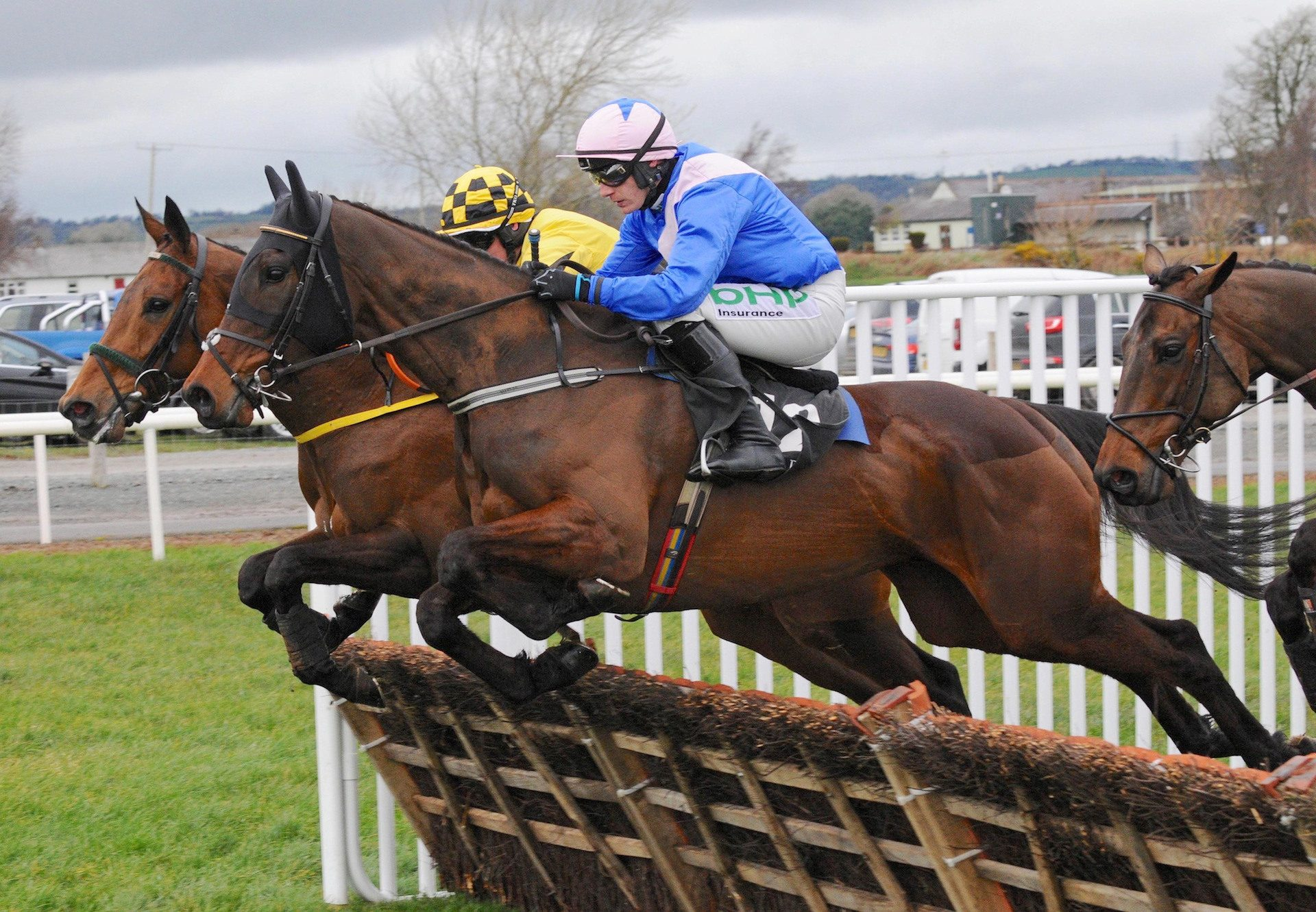 Roll Again (Walk In The Park) Wins The Maiden Hurdle At Down Royal 1