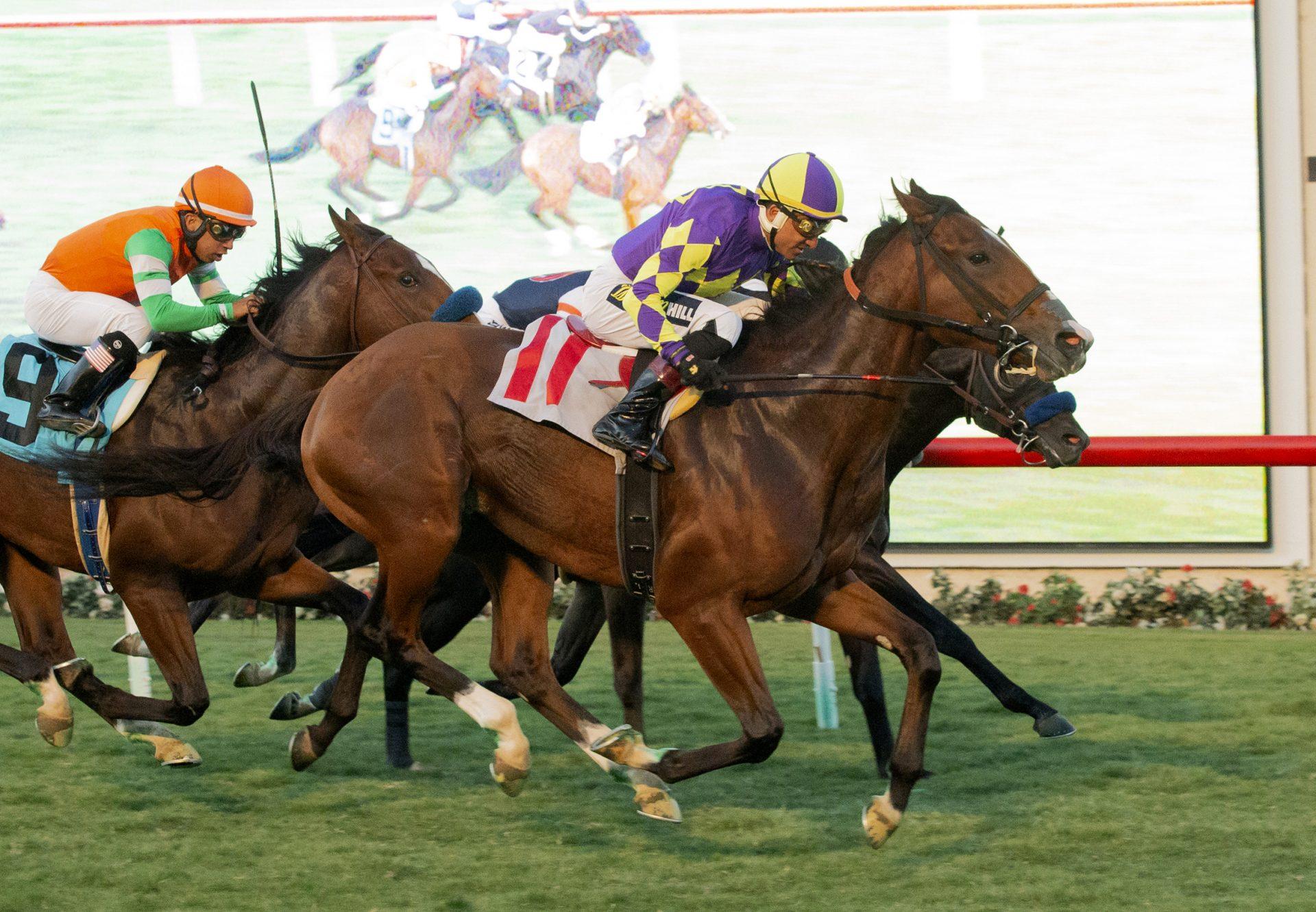 Royal Act American Pharoah Del Mar Maiden Win