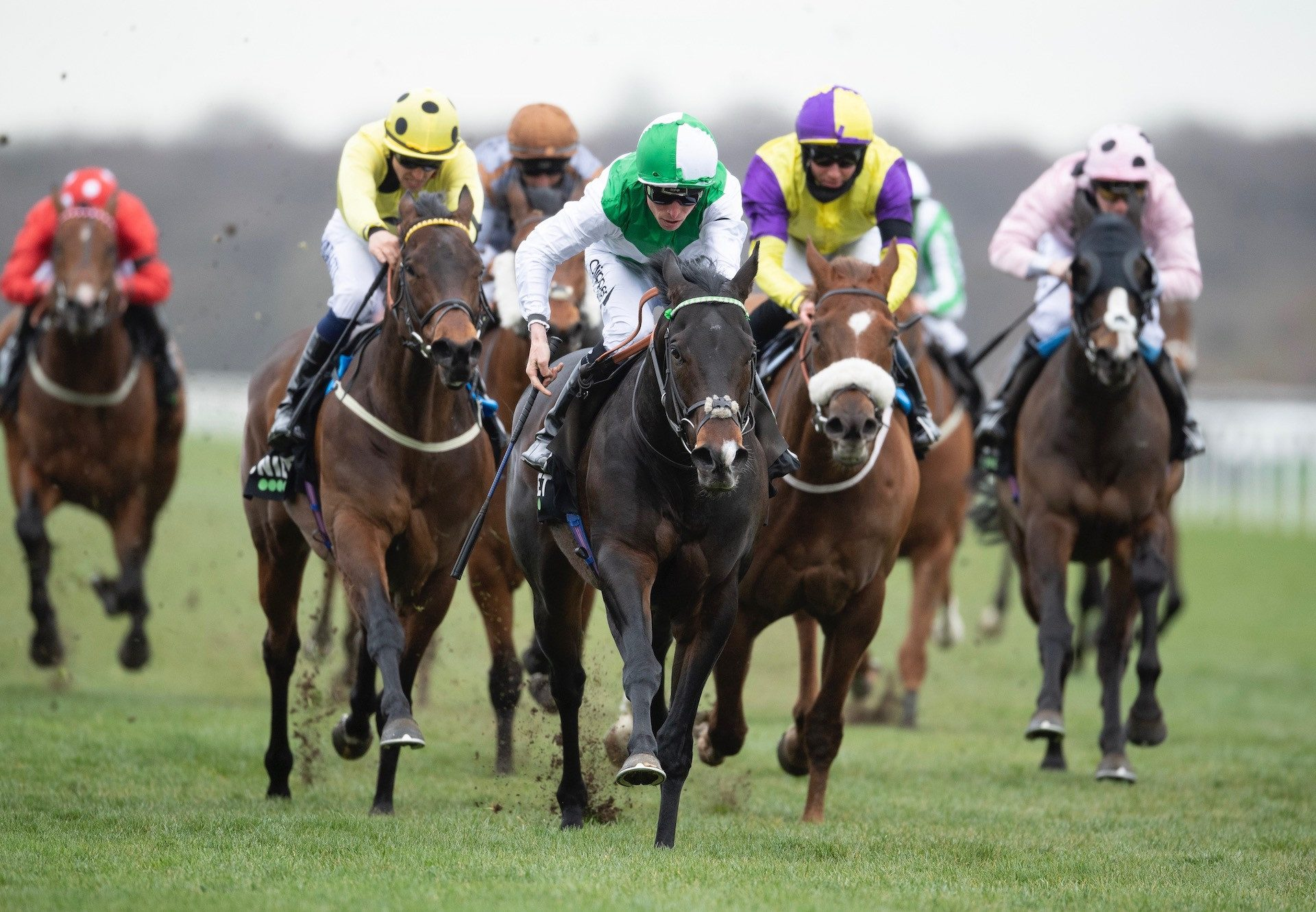 Royal Commando (No Nay Never) Wins The Listed Cammidge Trophy Stakes at Doncaster