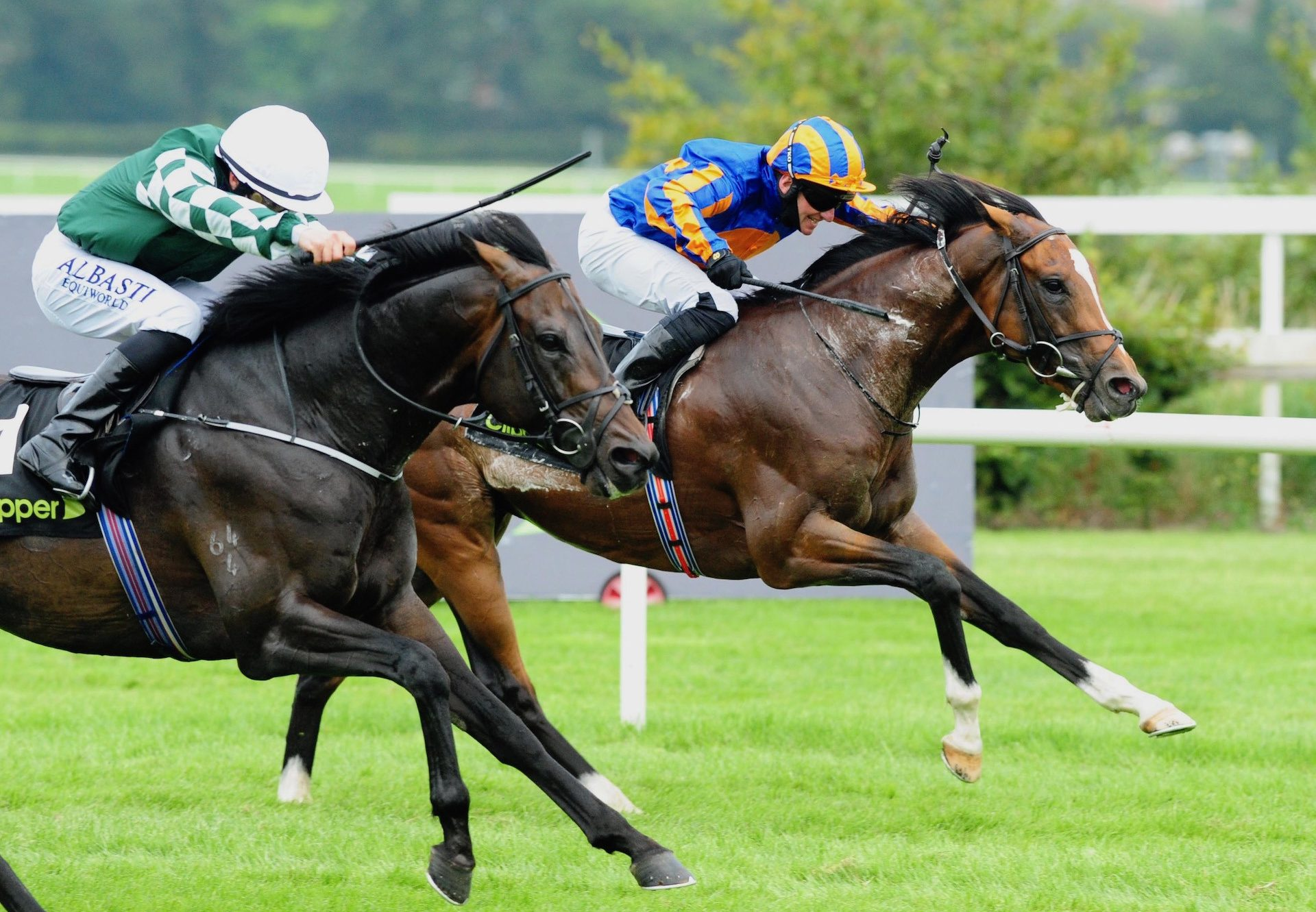 Royal Dornoch (Gleneagles) Wins The Gr.3 Desmond Stakes at Leopardstown