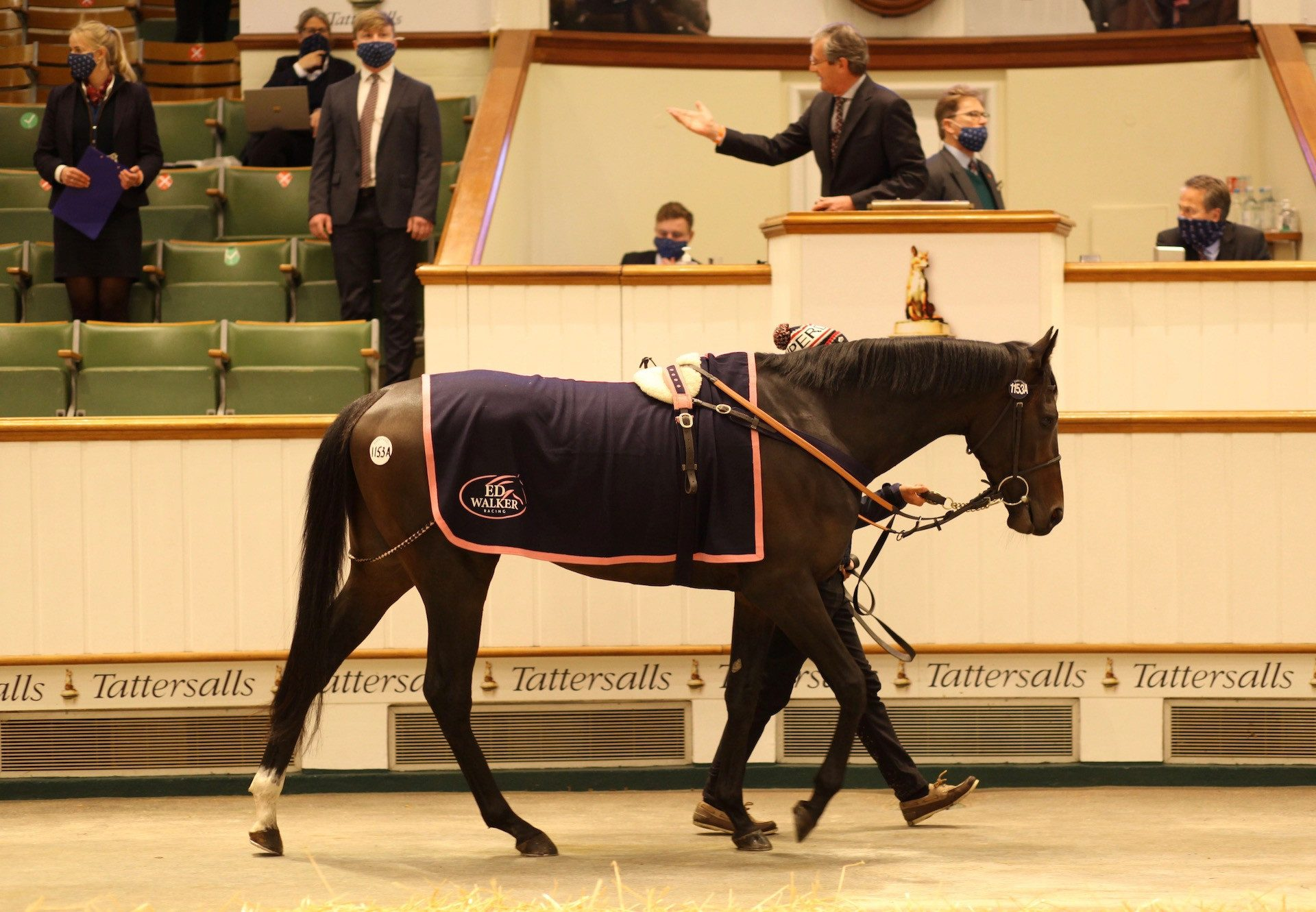 English King (Camelot) Tops The Tattersalls Hit Sale