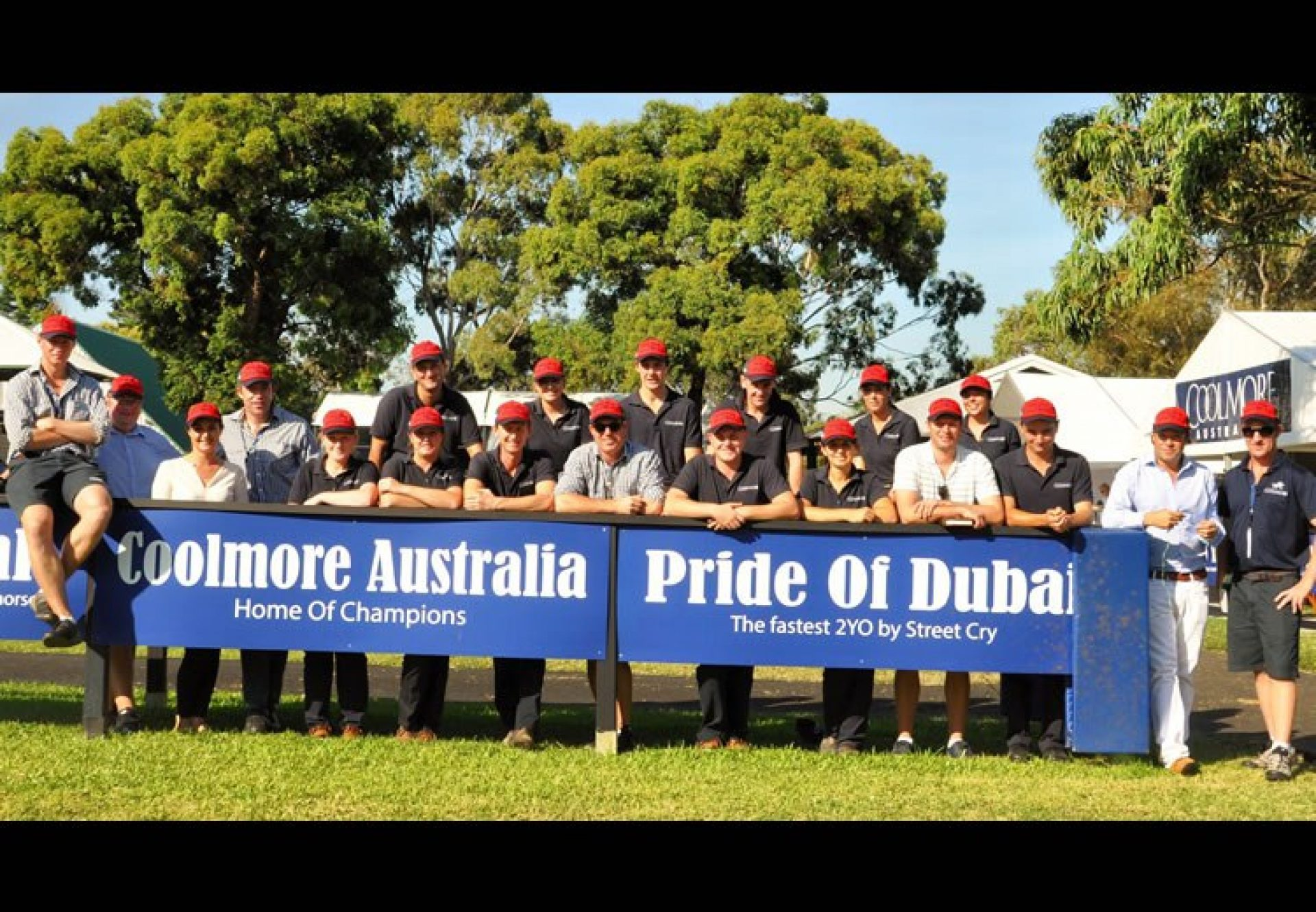 Coolmore Australia staff pictured at the sales