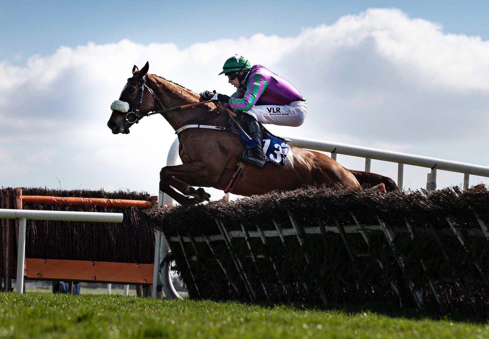 Salt Wind (Getaway) Wins The Maiden Hurdle At Fairyhouse