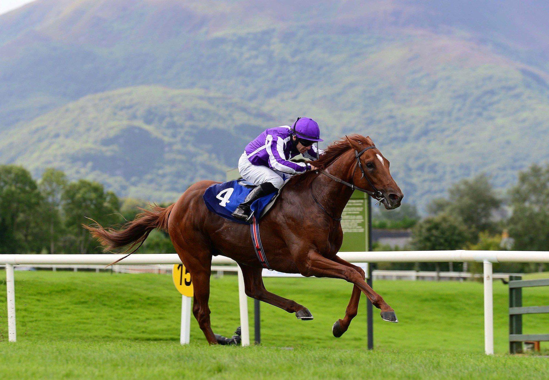 San Martino (The Gurkha) Wins His Maiden At Killarney