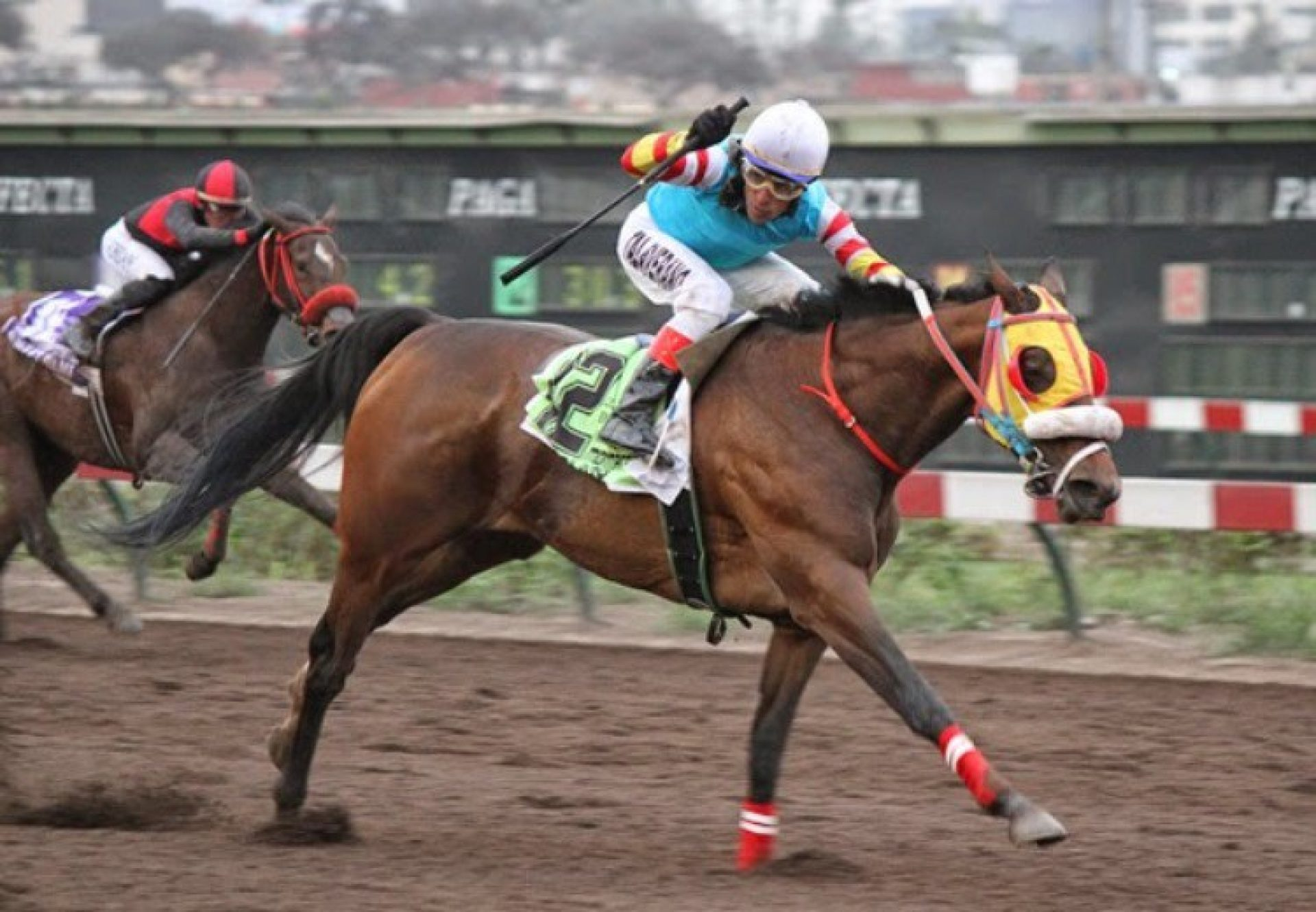 Sand Bijou (Footstepsinthesand) winning the Clasico Enrique Ayulo Pardo in Peru