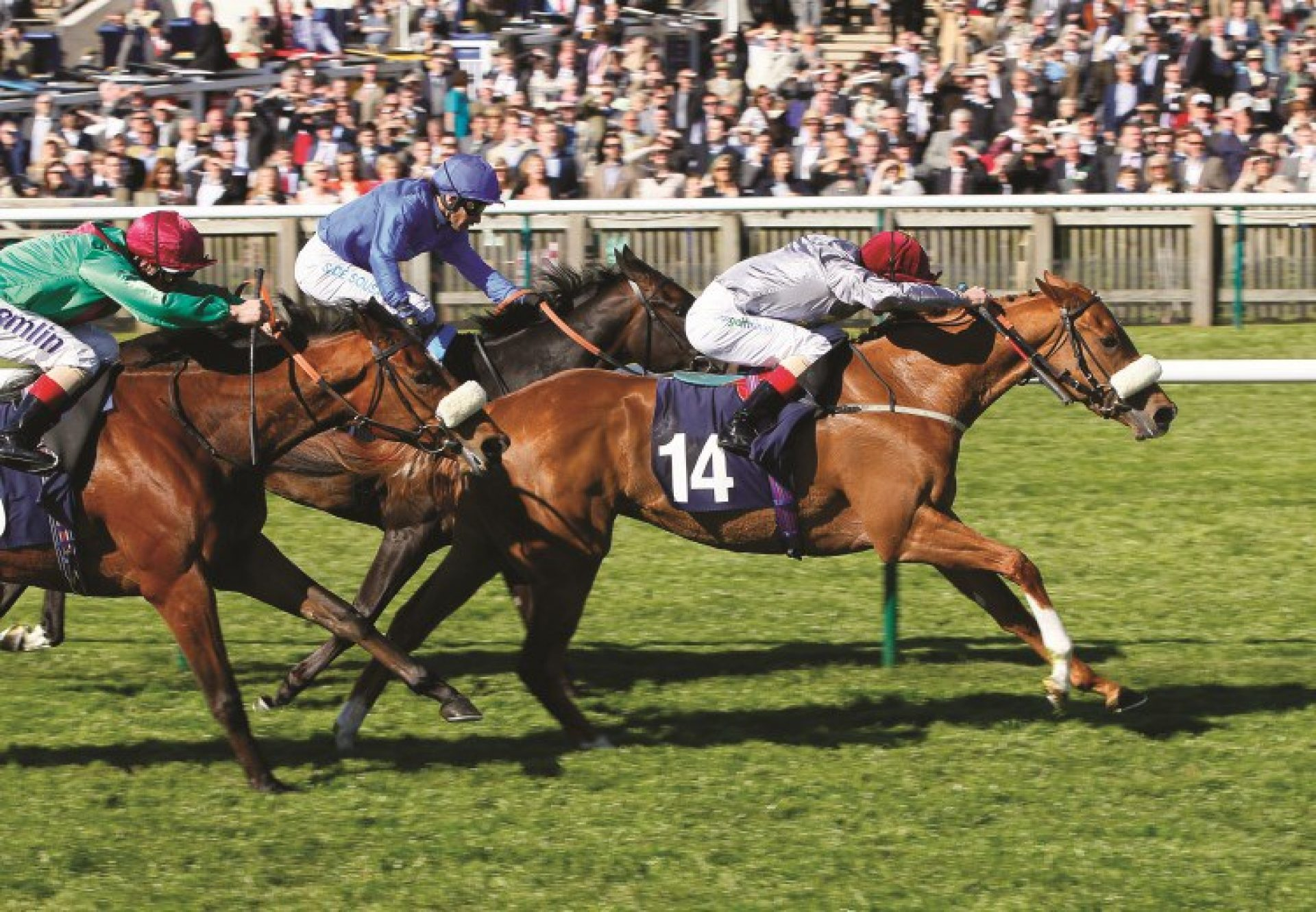Sandiva (Footstepsinthesand) winning the G3 Nell Gwyn Stakes at Newmarket