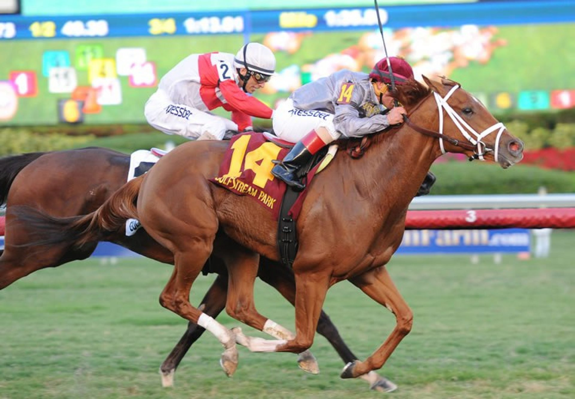 Sandiva (Footstepsinthesand) winning the Tropical Park Oaks at Gulfstream Park