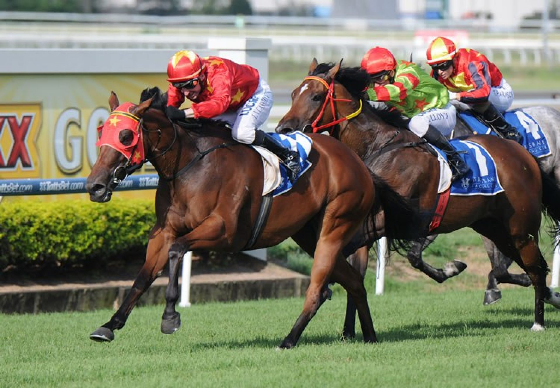 Reelem In Ruby (Pierro) winning the Gr.2 Hot Danish Stakes at Rosehill