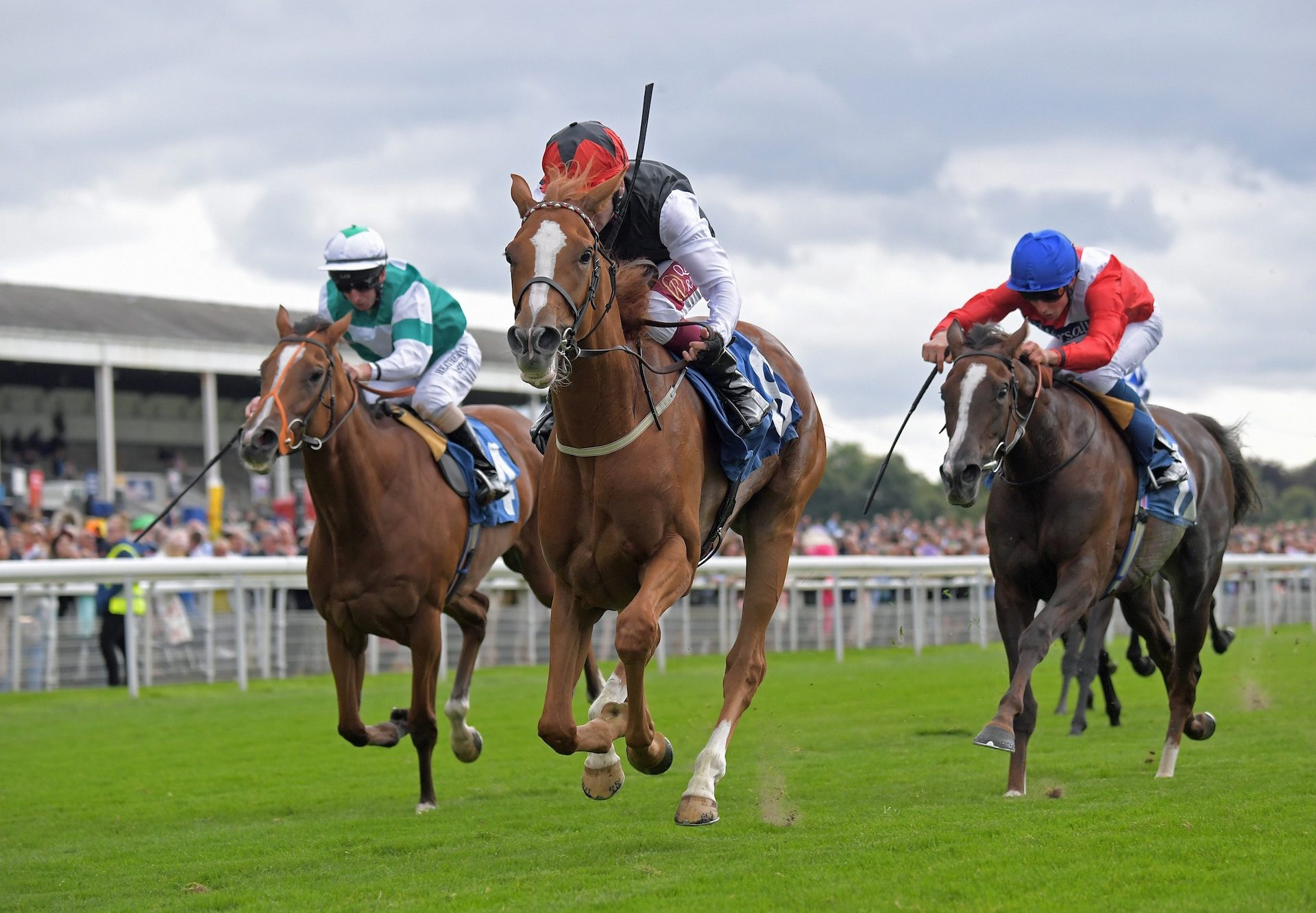Search For A Song Becomes The Latest Stakes Winner By Galileo